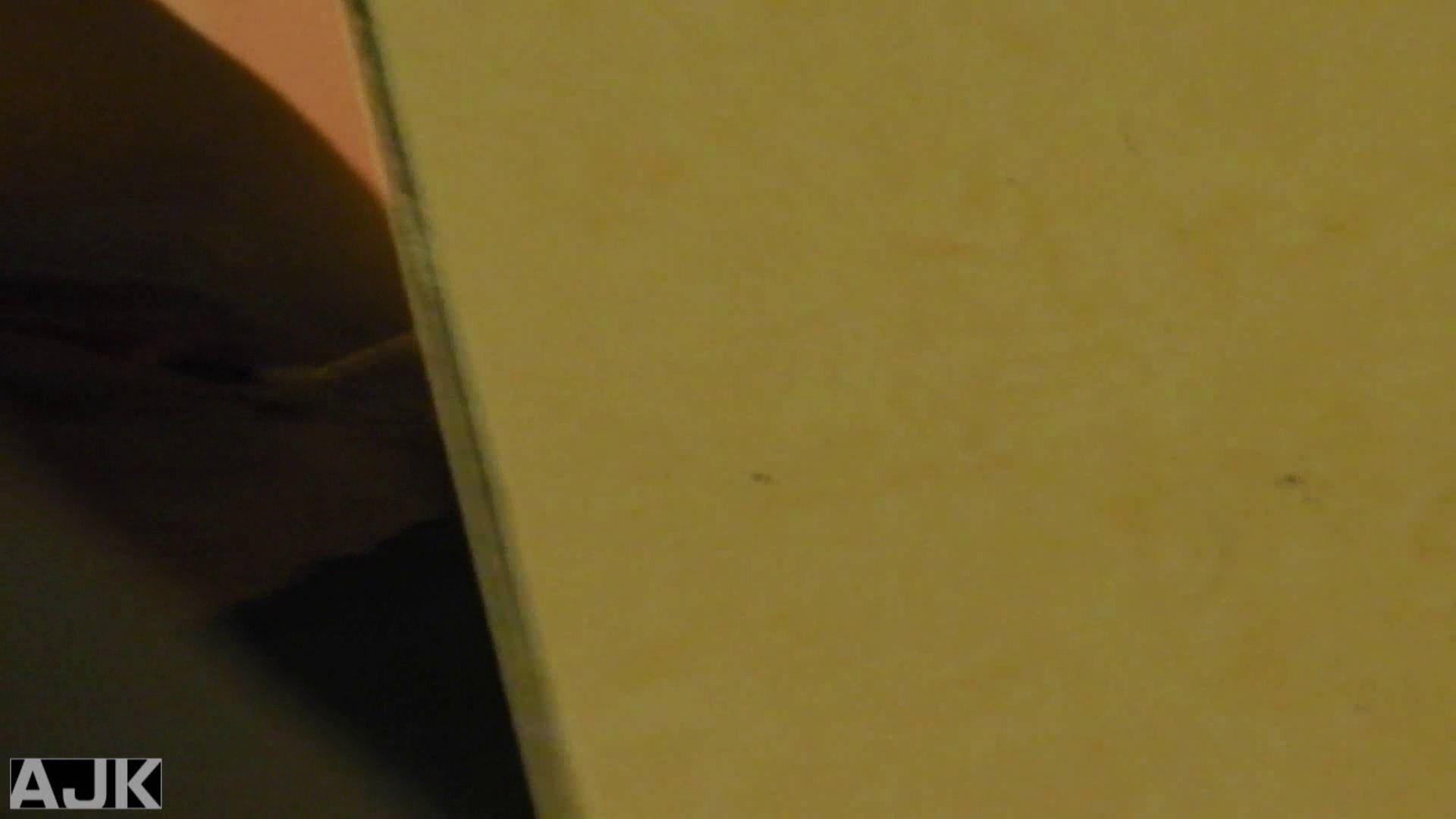 隣国上階級エリアの令嬢たちが集うデパートお手洗い Vol.09 女子トイレ編 ワレメ無修正動画無料 73画像 53