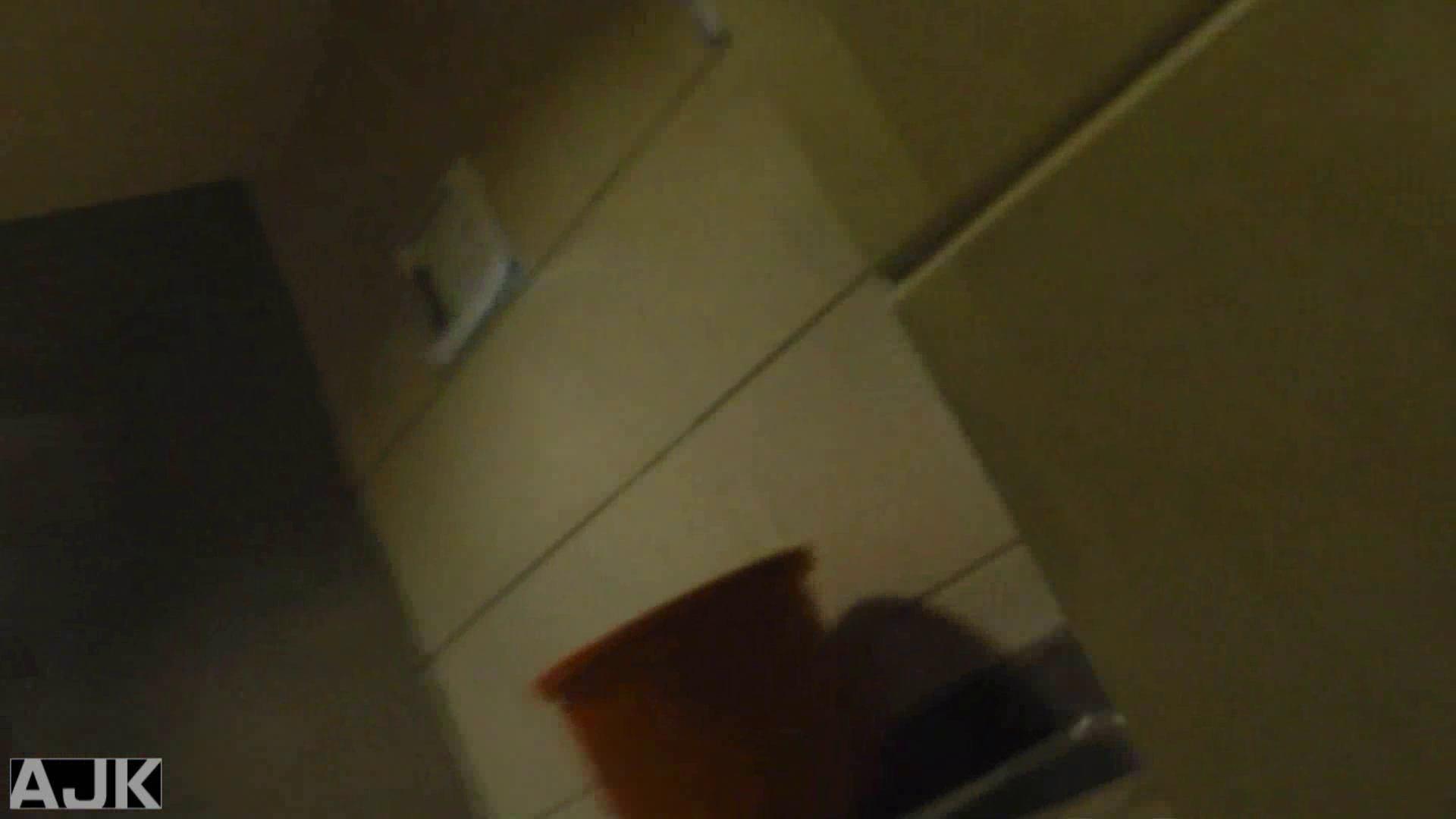 隣国上階級エリアの令嬢たちが集うデパートお手洗い Vol.09 マンコ スケベ動画紹介 73画像 70