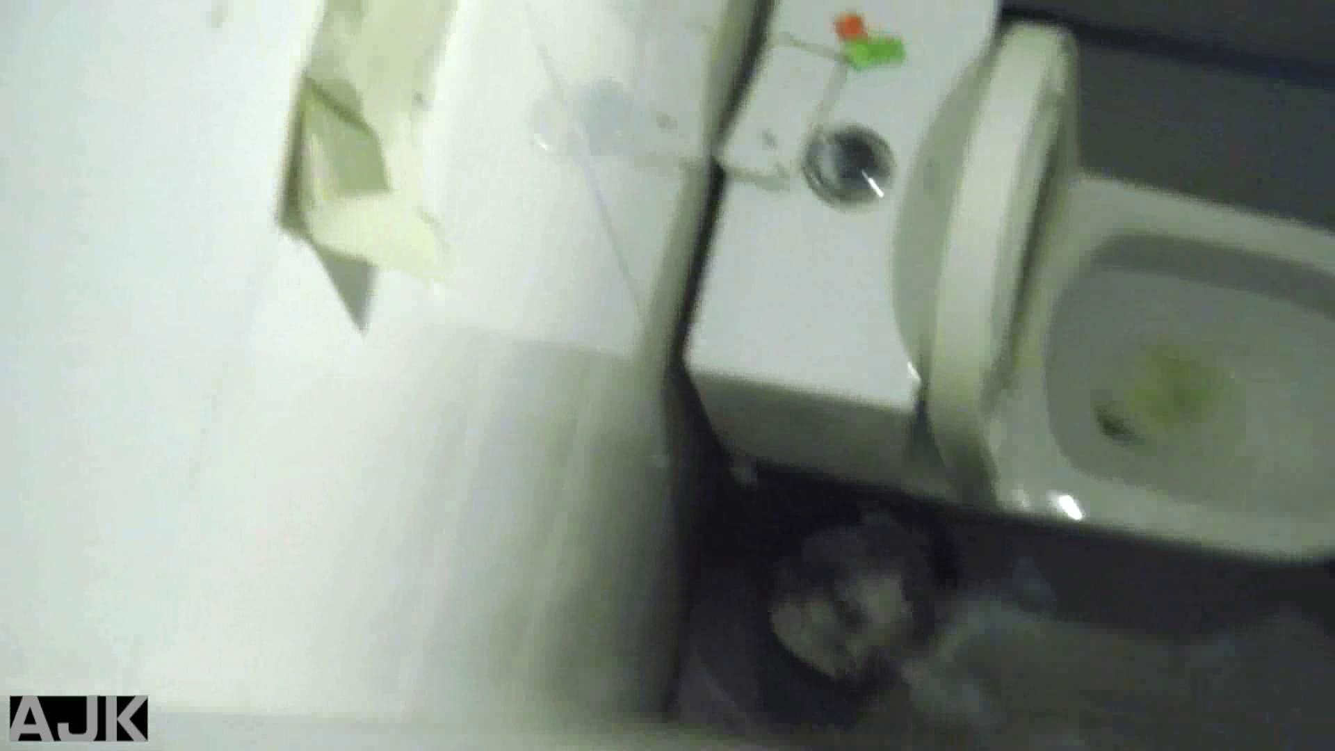 隣国上階級エリアの令嬢たちが集うデパートお手洗い Vol.13 マンコ  100画像 22