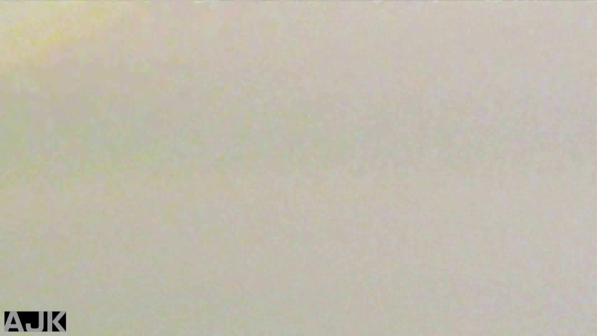 隣国上階級エリアの令嬢たちが集うデパートお手洗い Vol.19 盗撮・必見 アダルト動画キャプチャ 36画像 14