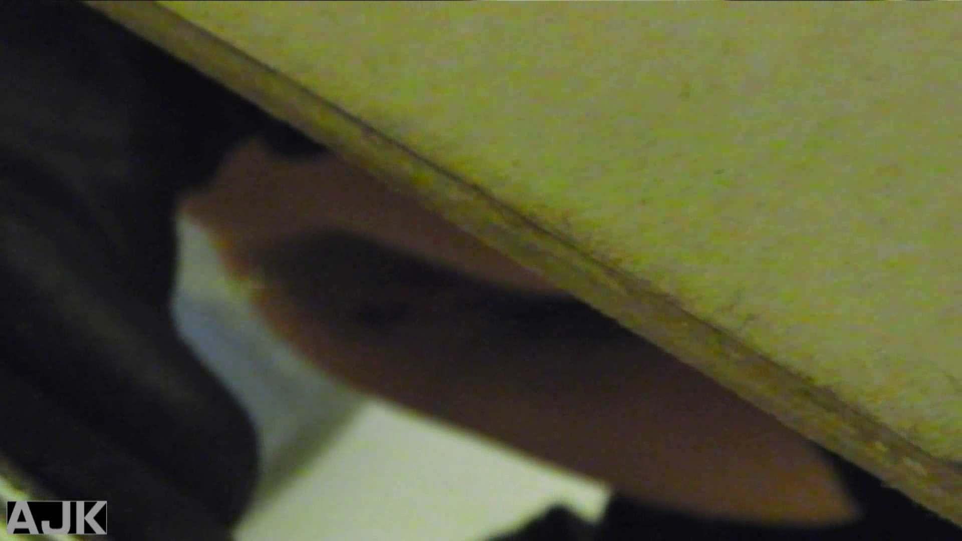 隣国上階級エリアの令嬢たちが集うデパートお手洗い Vol.19 女子トイレ編 ぱこり動画紹介 36画像 31