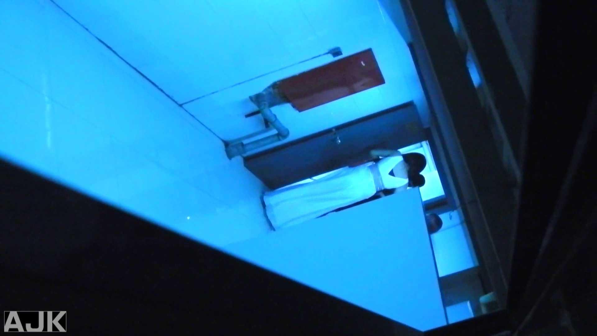 隣国上階級エリアの令嬢たちが集うデパートお手洗い Vol.24 おまんこ オマンコ動画キャプチャ 82画像 10