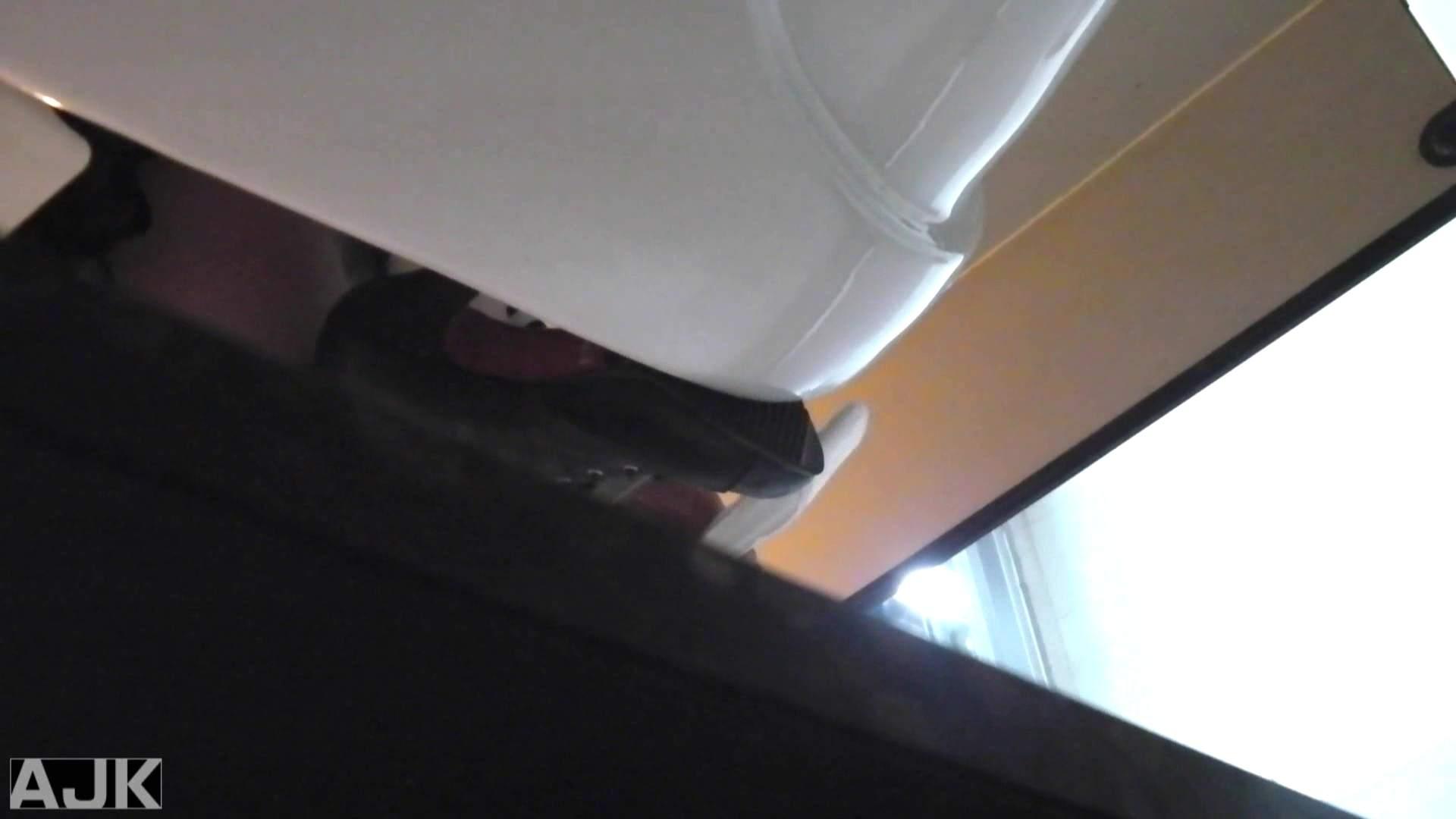 隣国上階級エリアの令嬢たちが集うデパートお手洗い Vol.25 便所で・・・ セックス画像 65画像 61