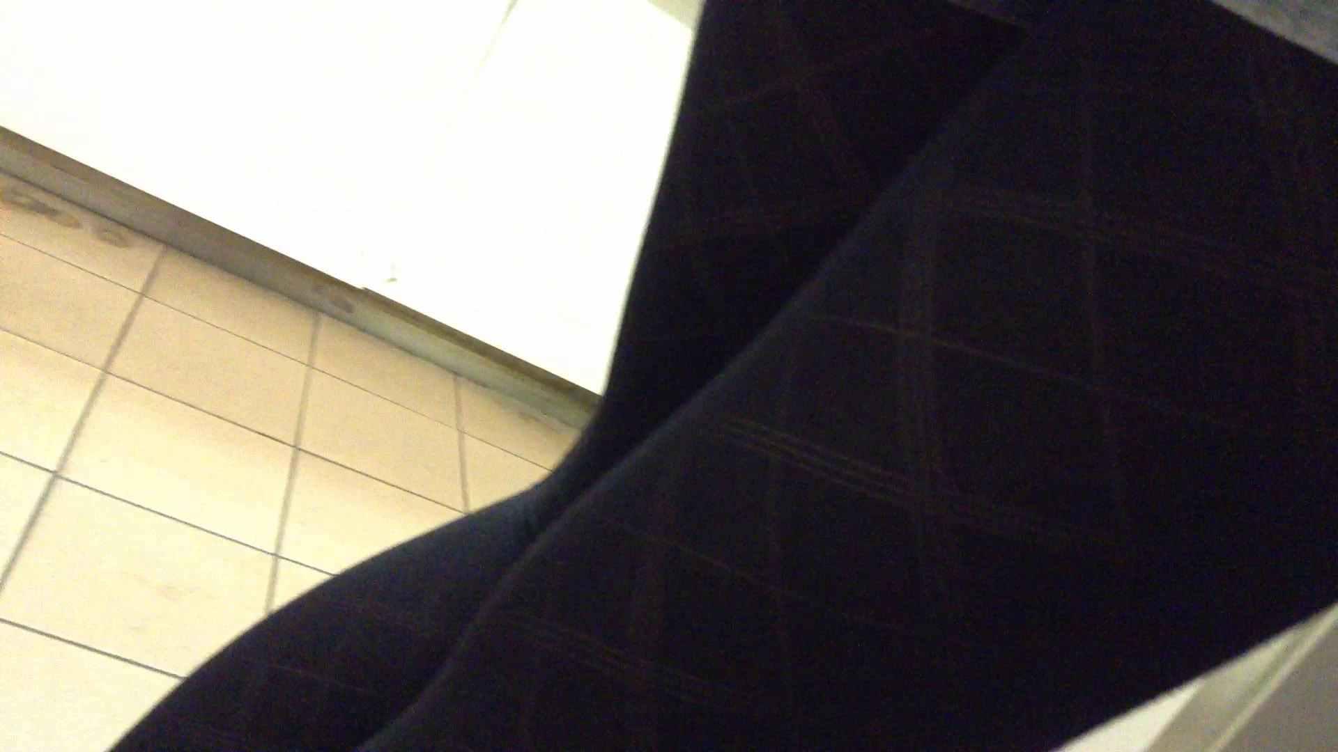 女子洗面所行列潜入記 Vol.06 高画質動画 オメコ無修正動画無料 69画像 25