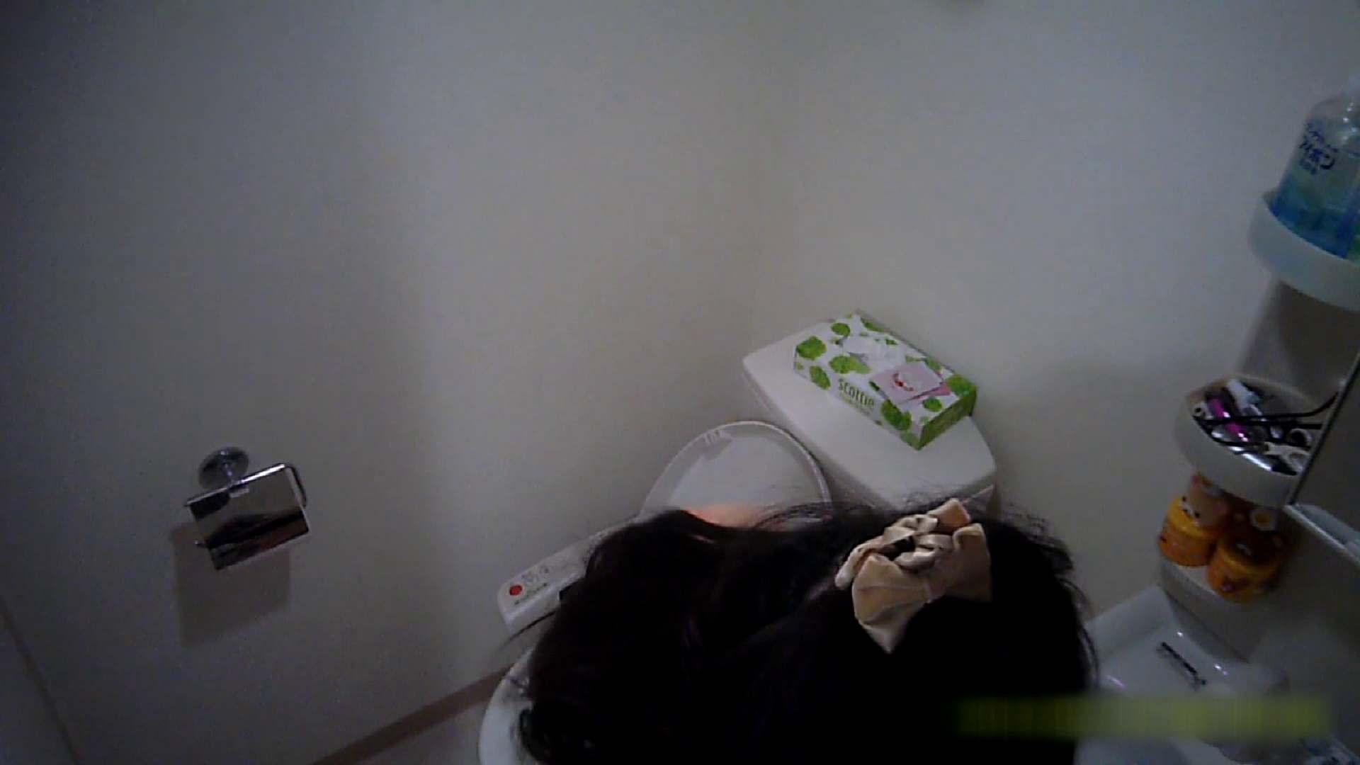 清楚な顔してかなり敏感なE子25歳(仮名)Vol.05 裸でトイレ編 エッチなお姉さん | 美乳  105画像 50