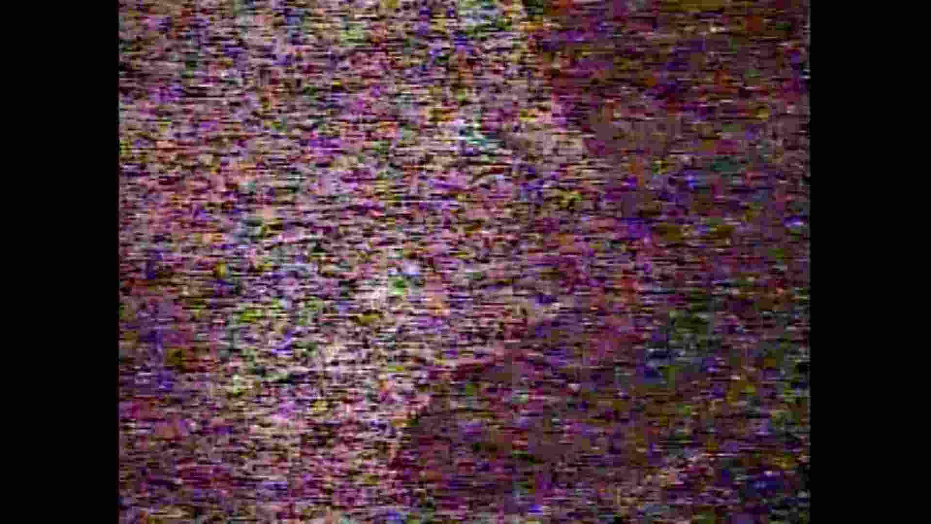 レース場での秘め事 Vol.05 洗面所シーン ぱこり動画紹介 97画像 64