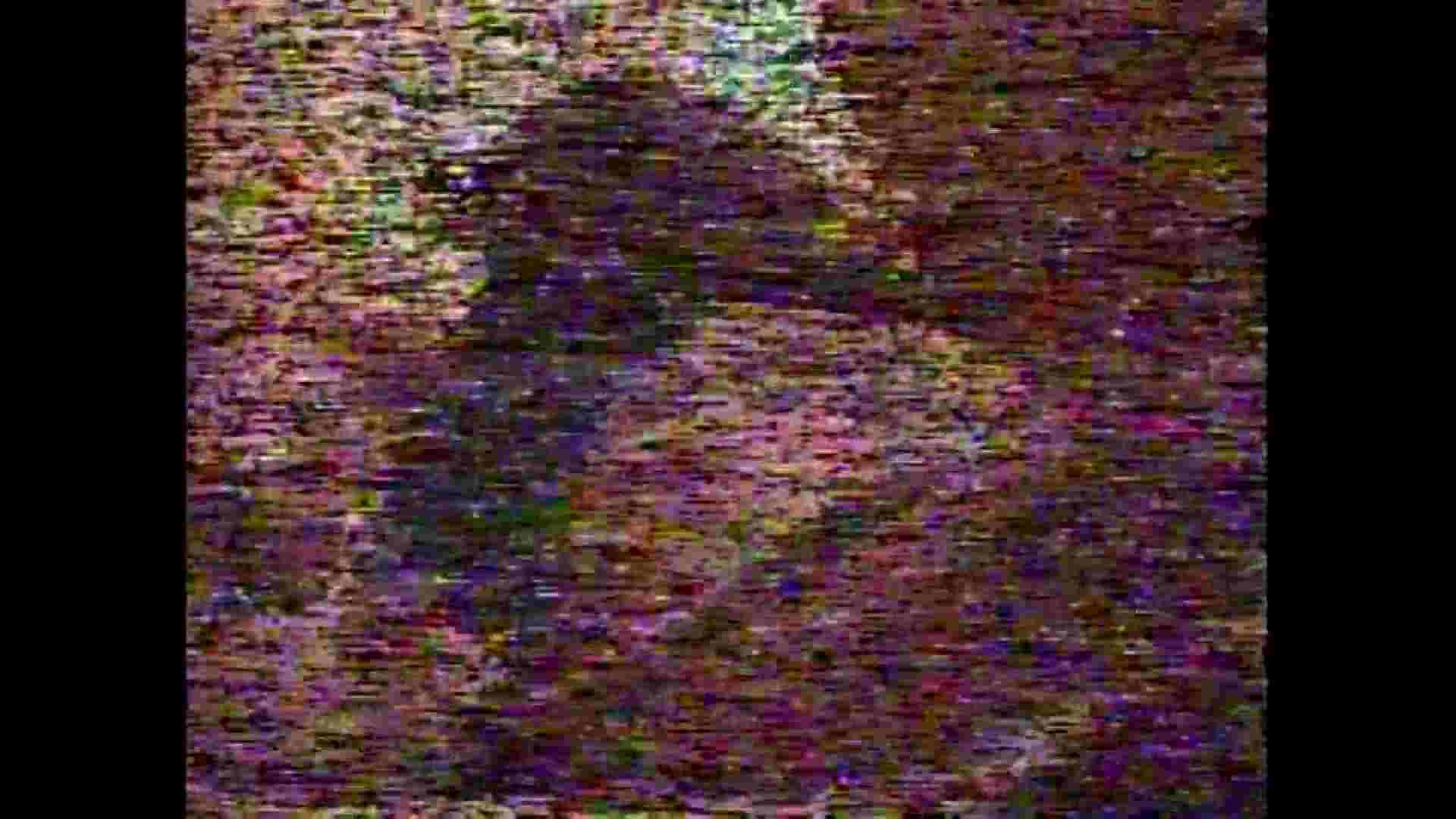 レース場での秘め事 Vol.05 盛合せ えろ無修正画像 97画像 68