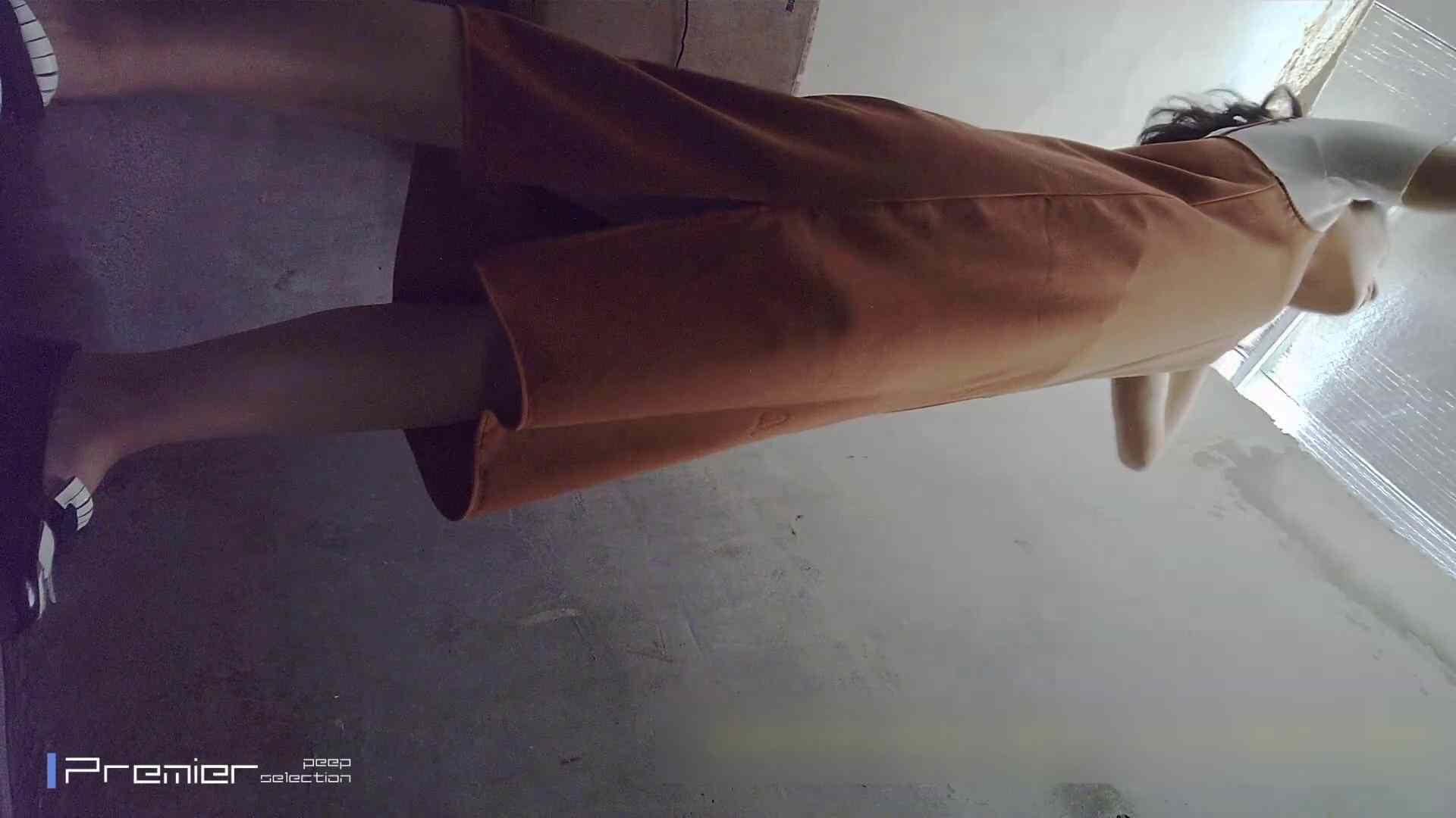 トイレシーンを密着盗撮!! 美女の痴態に密着!Vol.22 パンチラ・ギャル AV動画キャプチャ 104画像 19