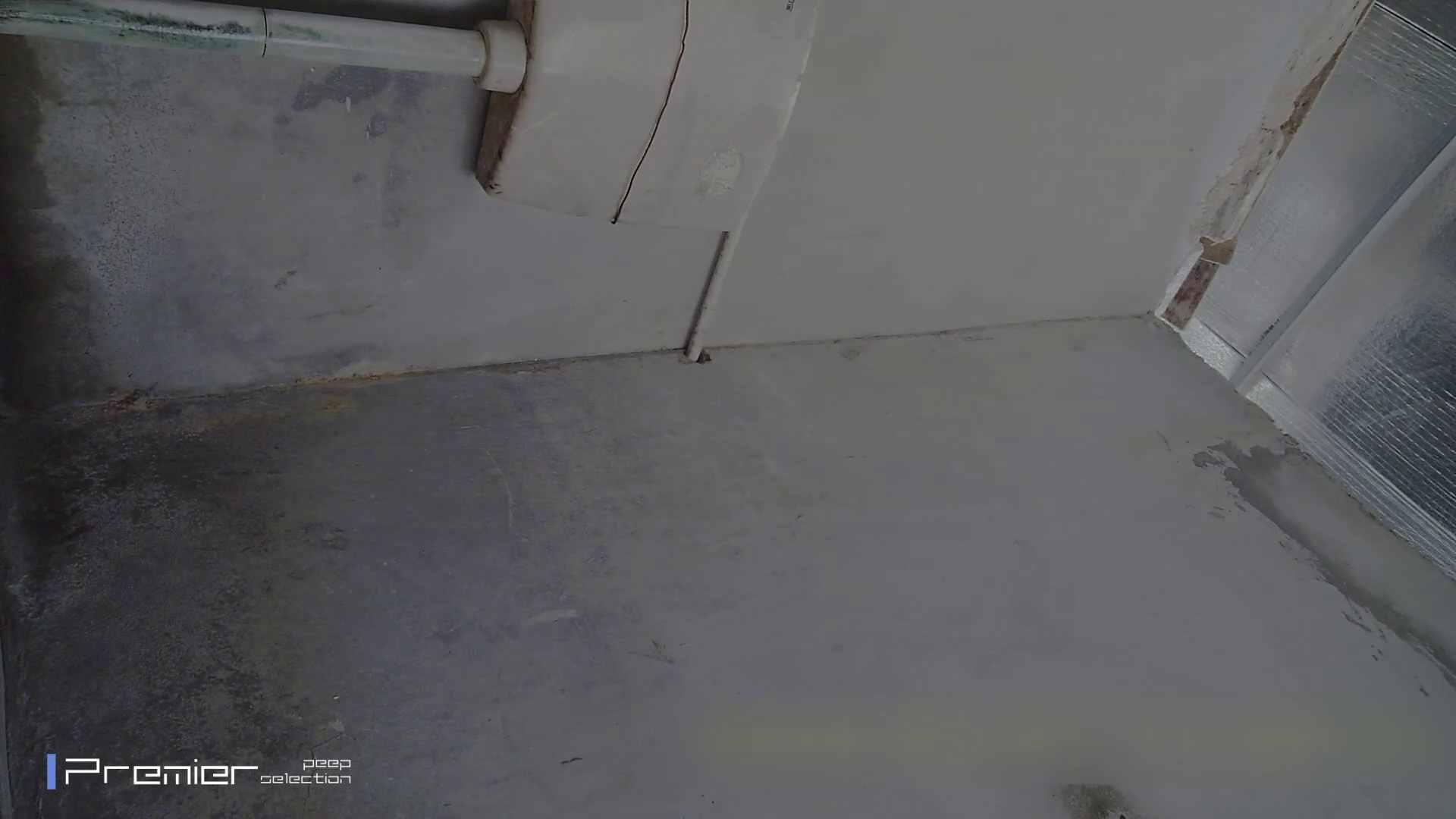 トイレシーンを密着盗撮!! 美女の痴態に密着!Vol.22 トイレで・・・ ワレメ無修正動画無料 104画像 31