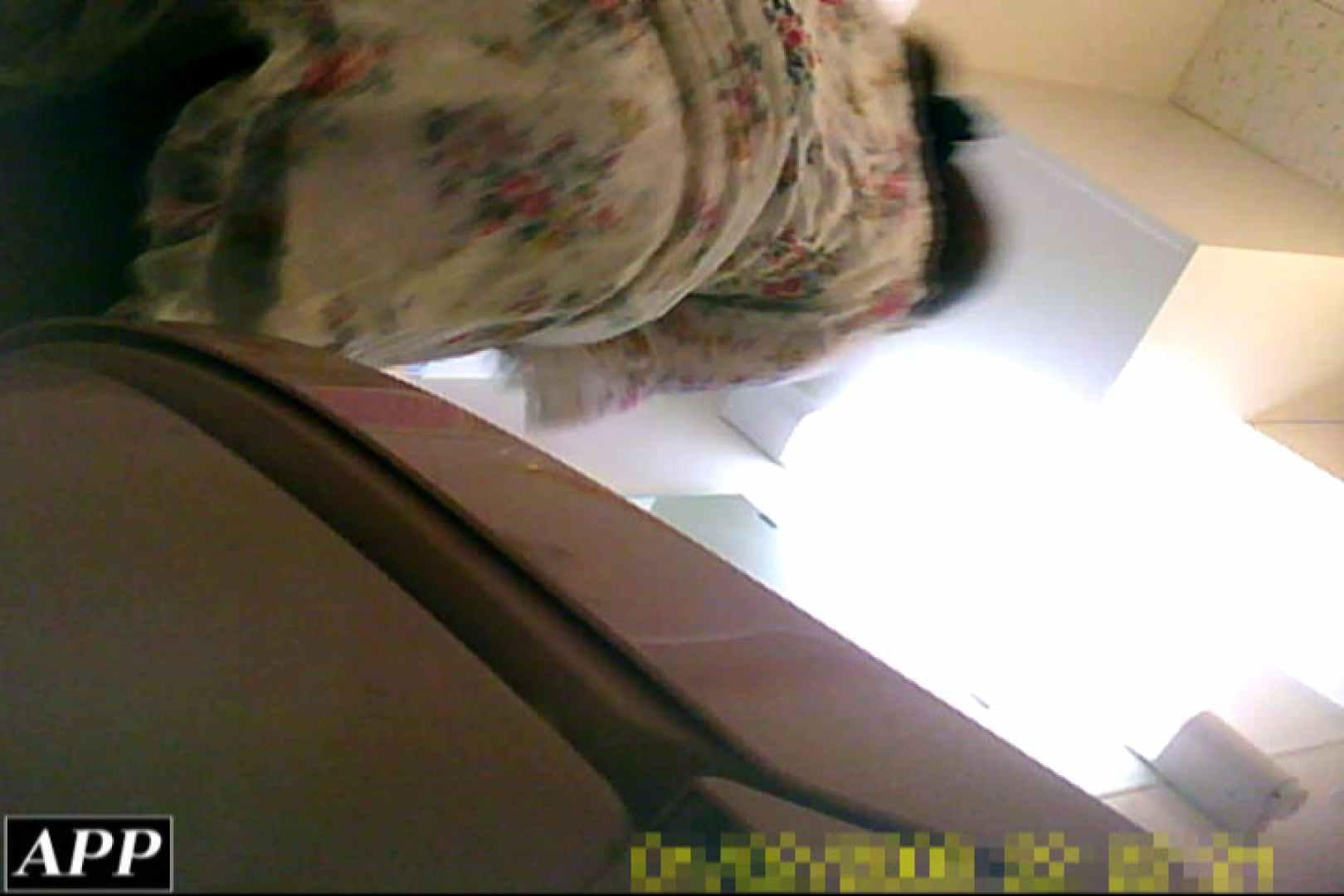 3視点洗面所 vol.110 オマンコ・ぱっくり オマンコ動画キャプチャ 32画像 26