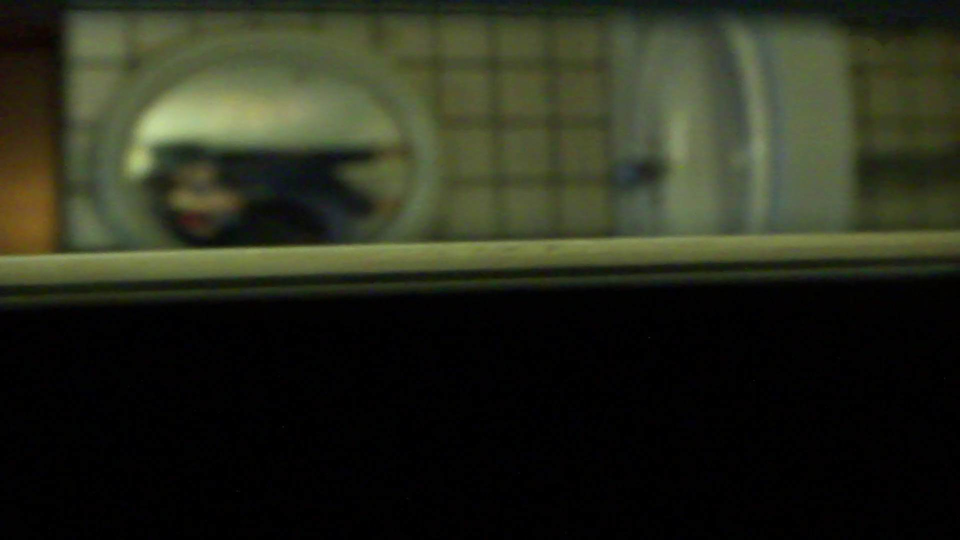 ギャルのツルピカ潜入盗撮!Vol.12 盛合せ エロ画像 77画像 52