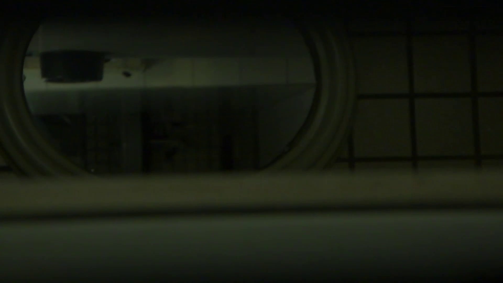 ギャルのツルピカ潜入盗撮!Vol.13 うんこ・・・ おめこ無修正画像 102画像 11
