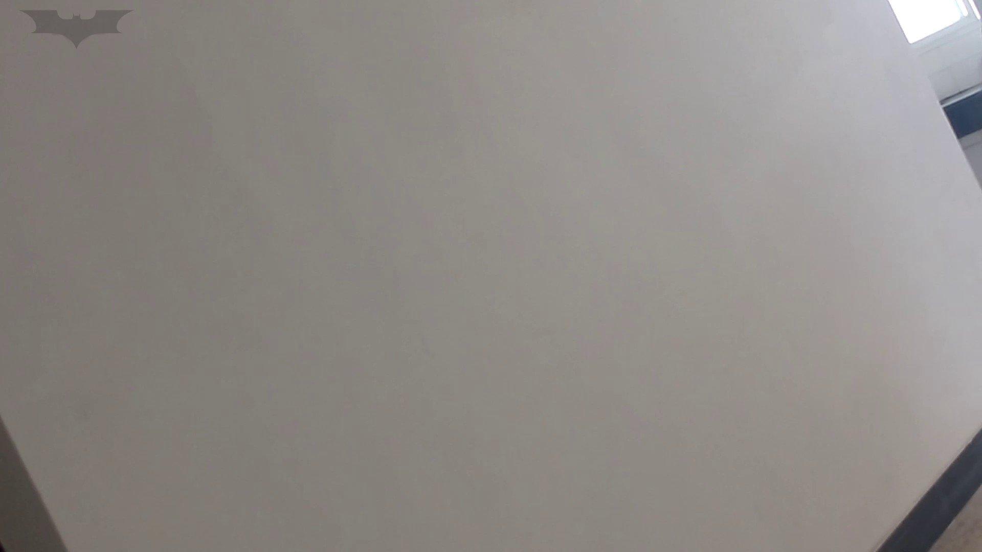 JD盗撮 美女の洗面所の秘密 Vol.09 細身・スレンダー われめAV動画紹介 95画像 10