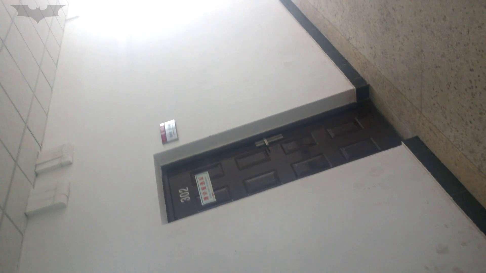 JD盗撮 美女の洗面所の秘密 Vol.09 盗撮・必見 AV動画キャプチャ 95画像 46