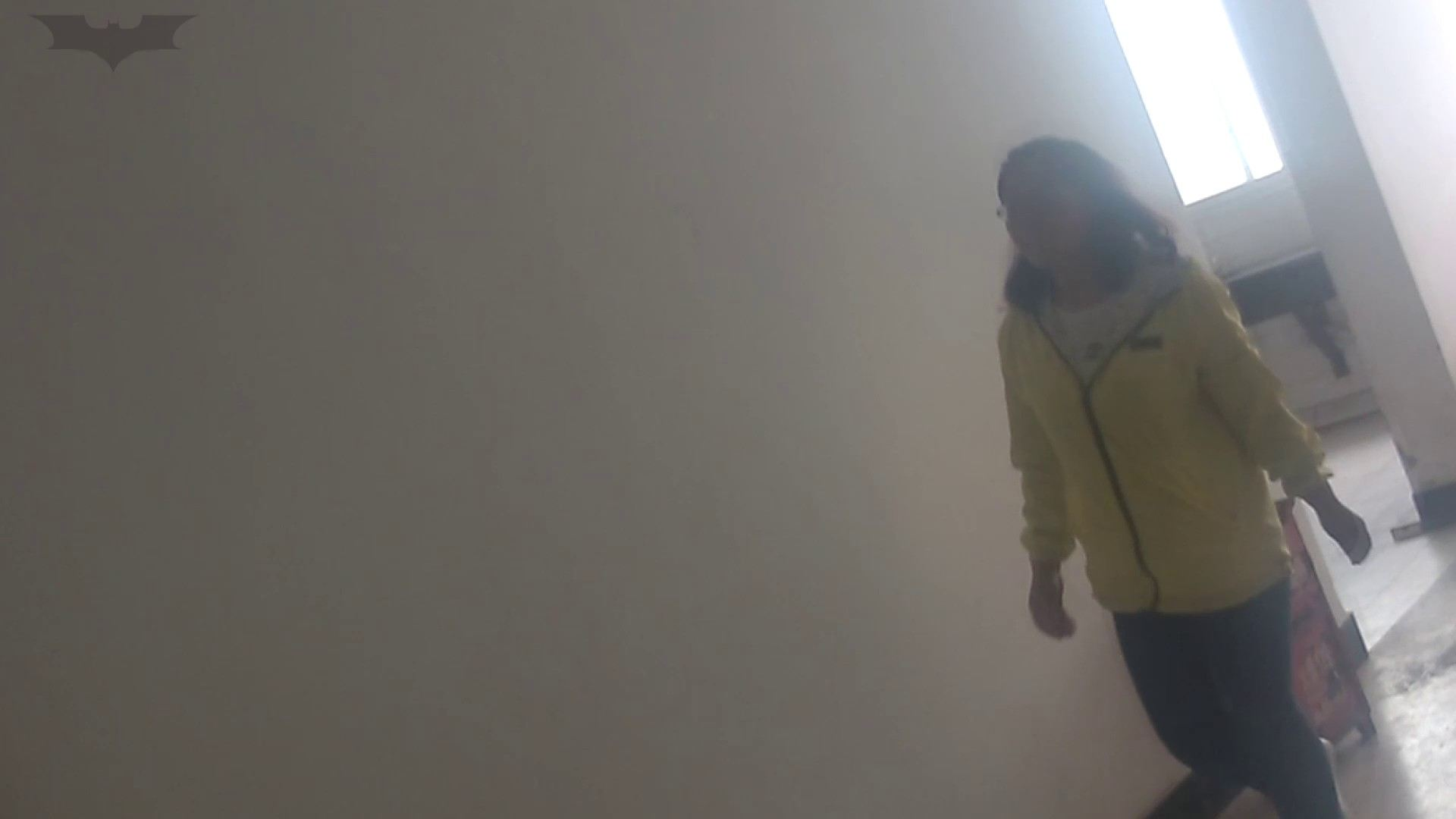 JD盗撮 美女の洗面所の秘密 Vol.09 美肌 アダルト動画キャプチャ 95画像 79
