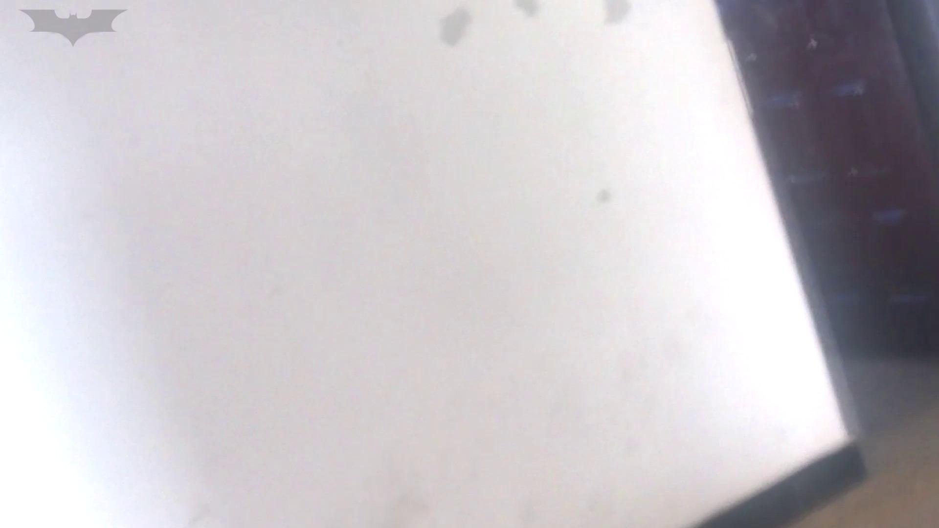 JD盗撮 美女の洗面所の秘密 Vol.09 細身・スレンダー われめAV動画紹介 95画像 94