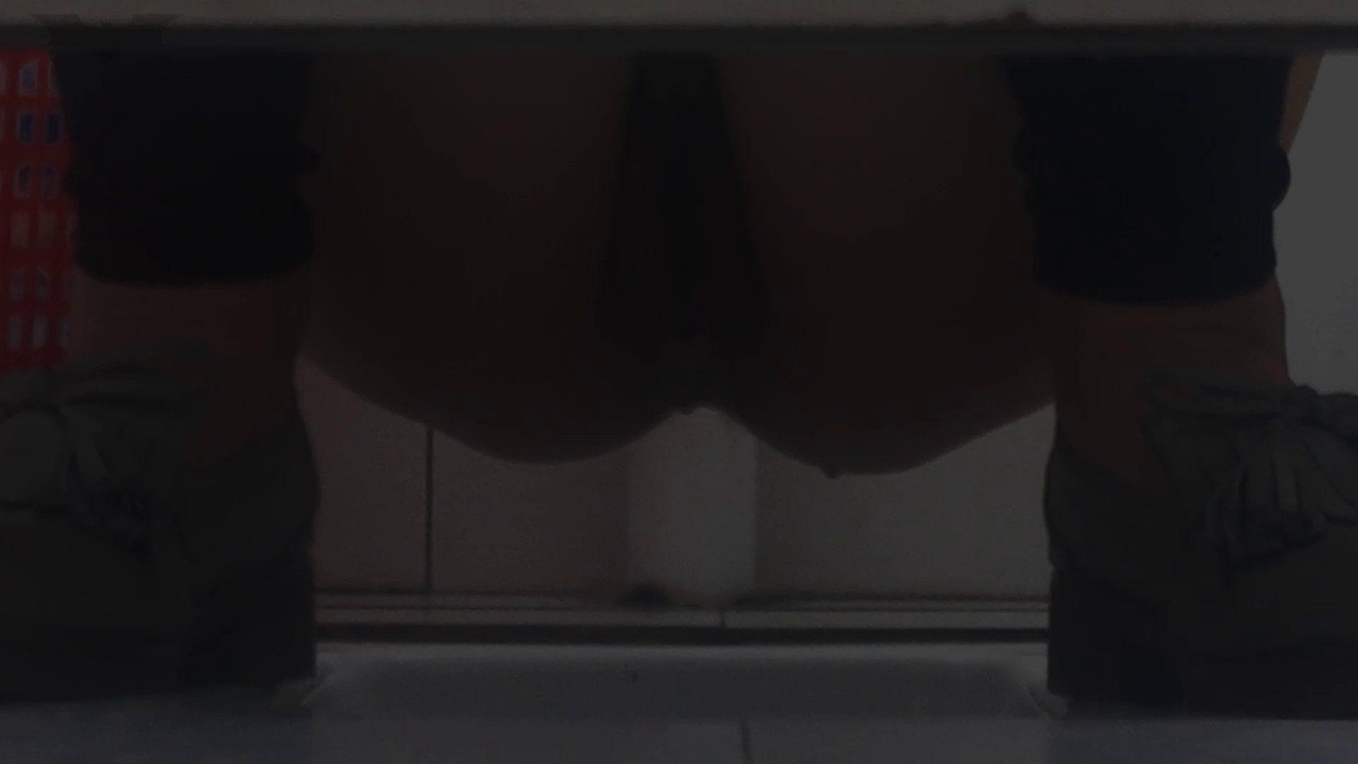 JD盗撮 美女の洗面所の秘密 Vol.10 トイレで・・・  67画像 8