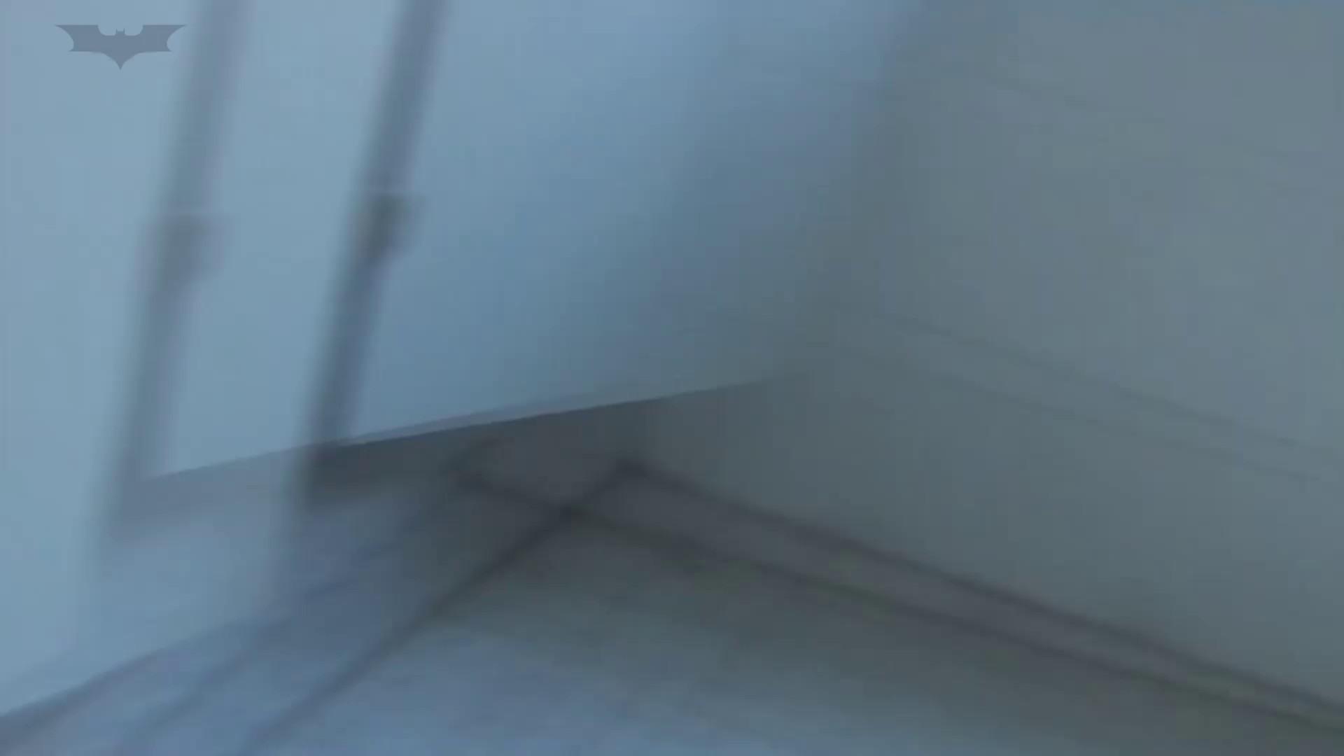 JD盗撮 美女の洗面所の秘密 Vol.21 美女 性交動画流出 63画像 18