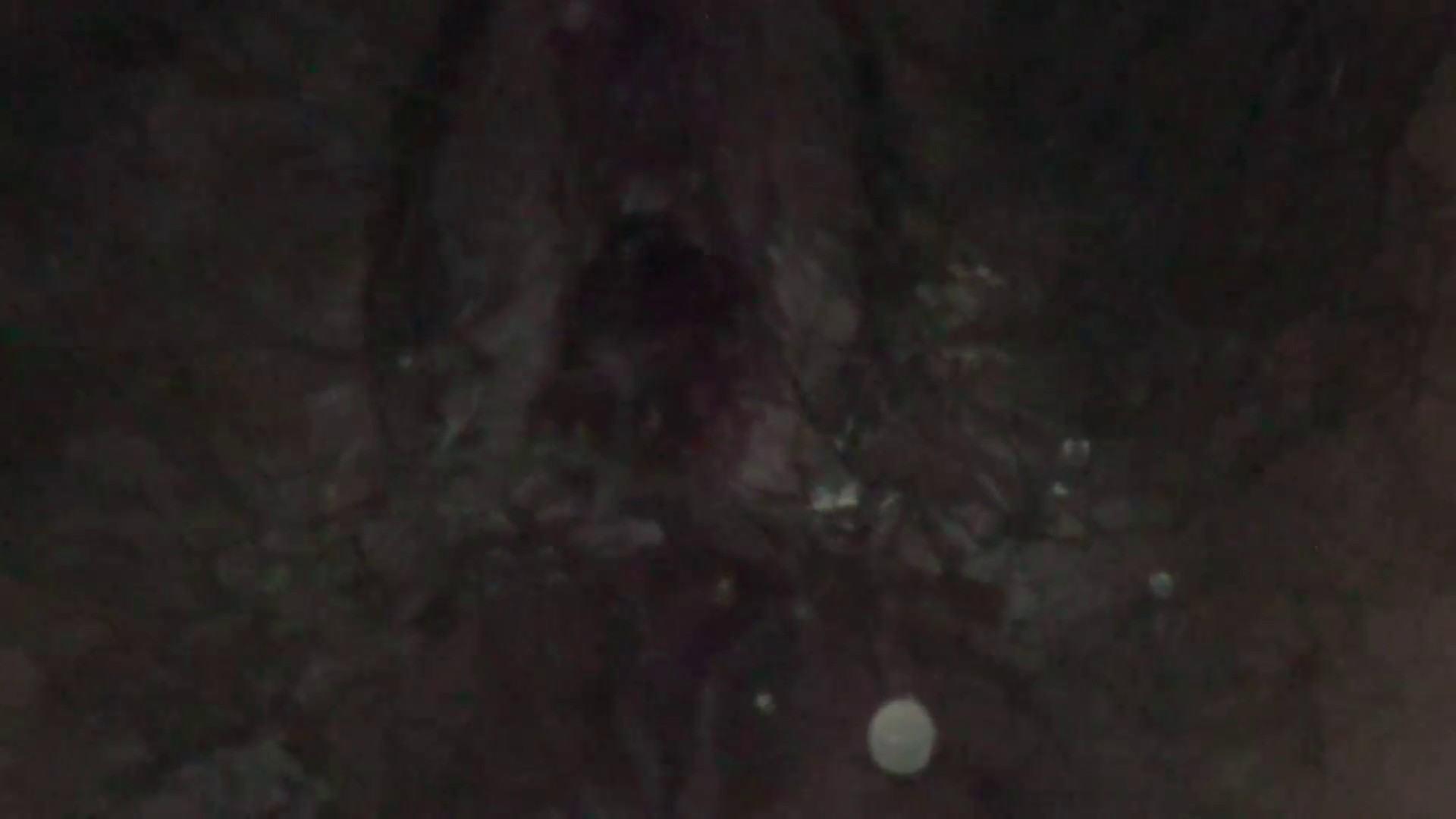 JD盗撮 美女の洗面所の秘密 Vol.28 美肌 おめこ無修正画像 71画像 71