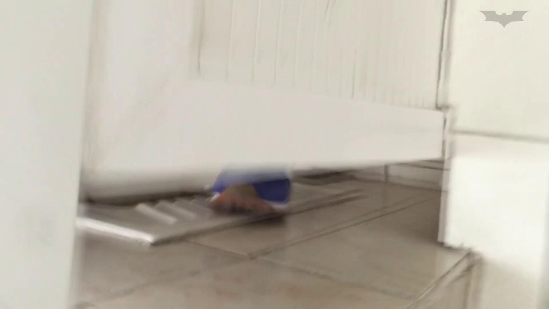 JD盗撮 美女の洗面所の秘密 Vol.43 トイレで・・・ AV無料 79画像 32