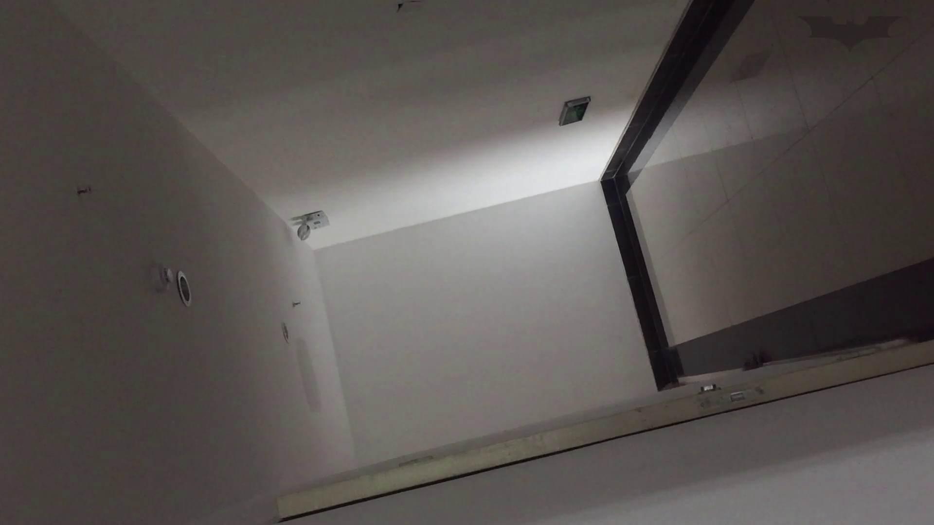 JD盗撮 美女の洗面所の秘密 Vol.74 洗面所シーン オメコ動画キャプチャ 109画像 17