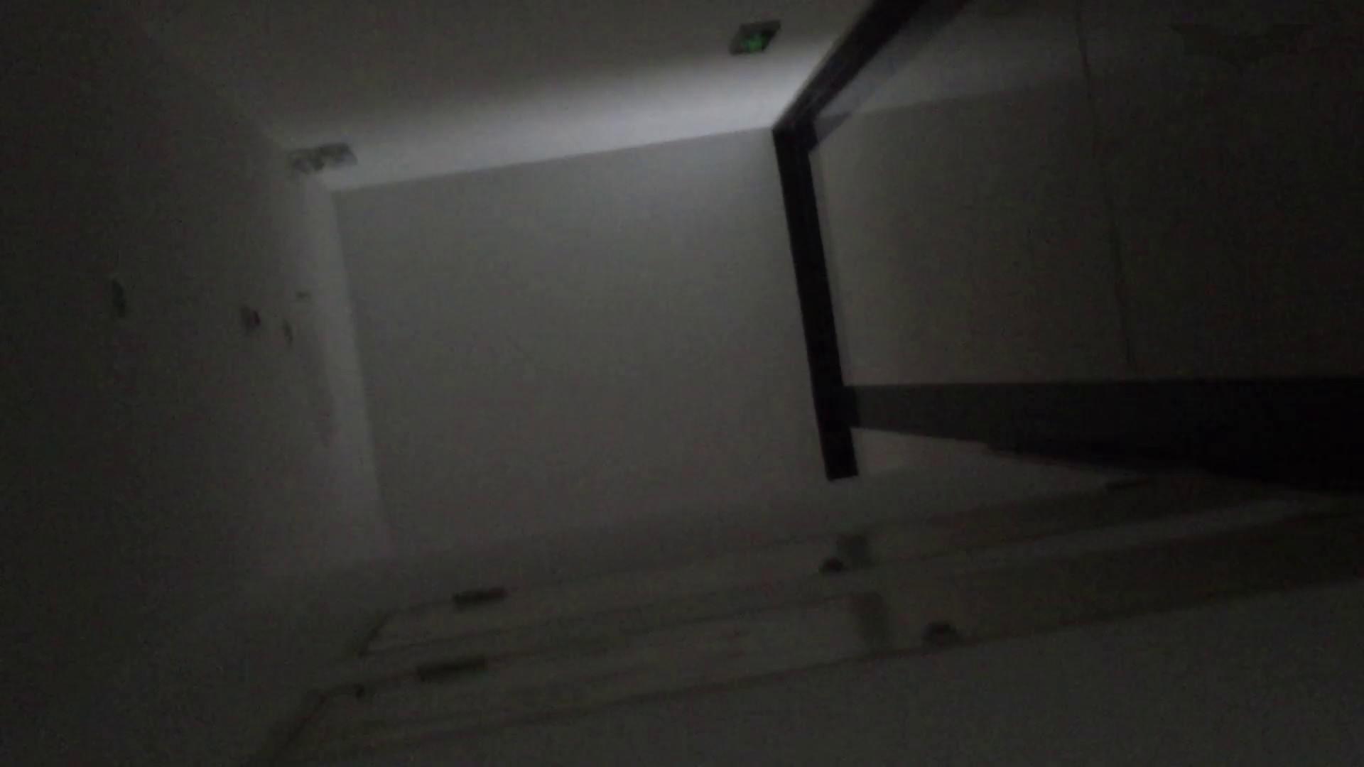 JD盗撮 美女の洗面所の秘密 Vol.74 美肌 オマンコ動画キャプチャ 109画像 45