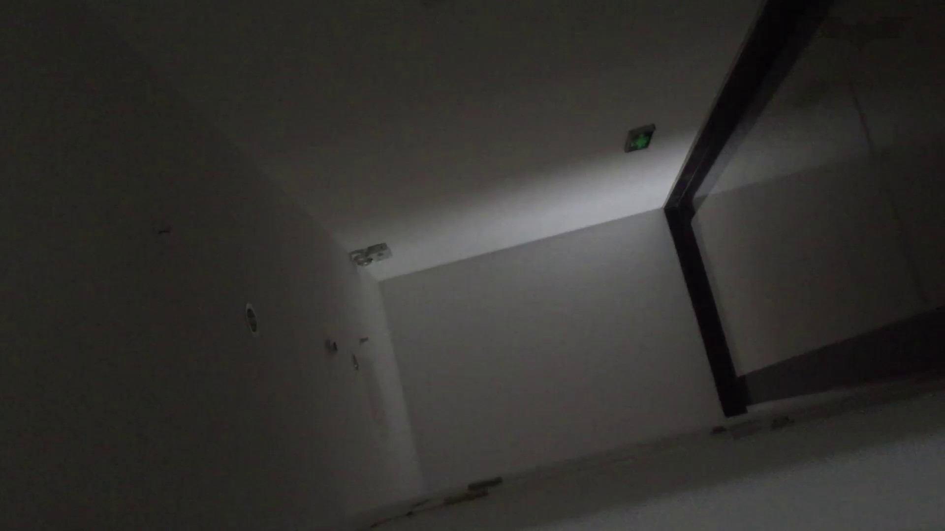 JD盗撮 美女の洗面所の秘密 Vol.74 細身・スレンダー おまんこ動画流出 109画像 46