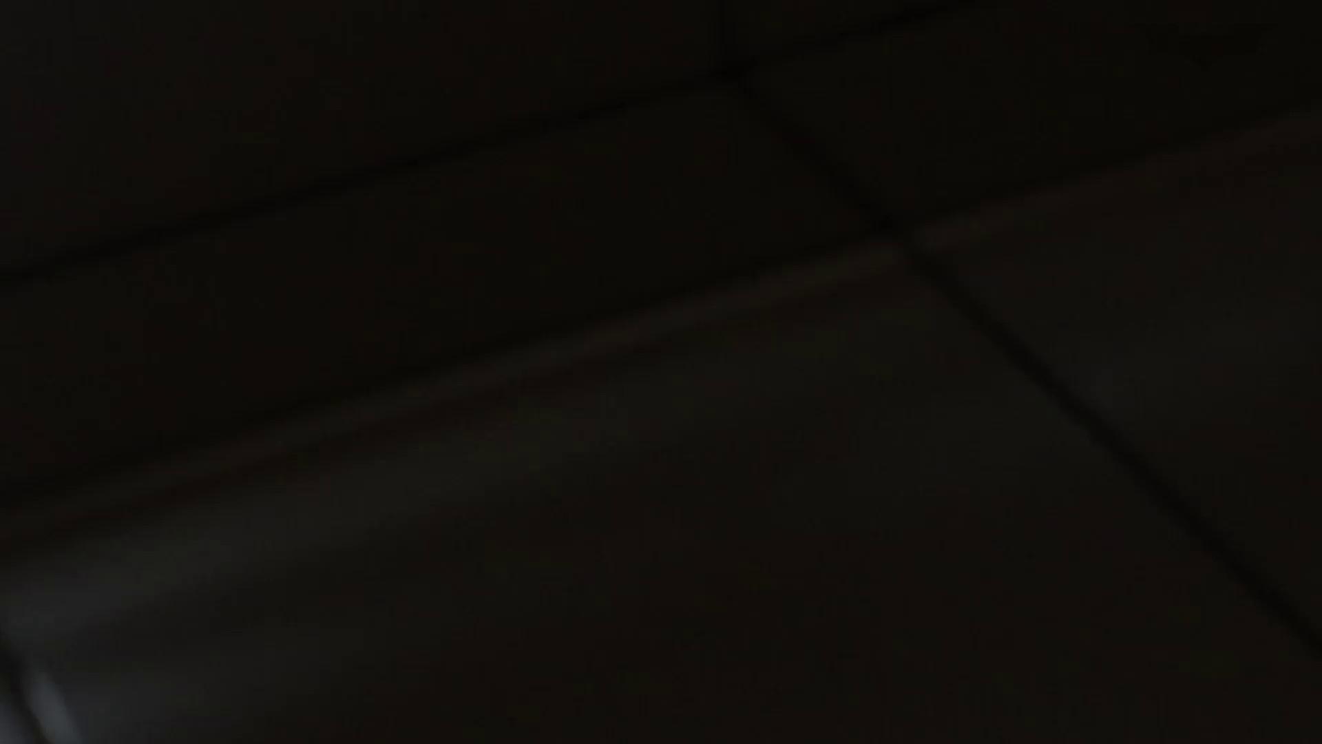 JD盗撮 美女の洗面所の秘密 Vol.74 高画質動画 AV無料 109画像 108