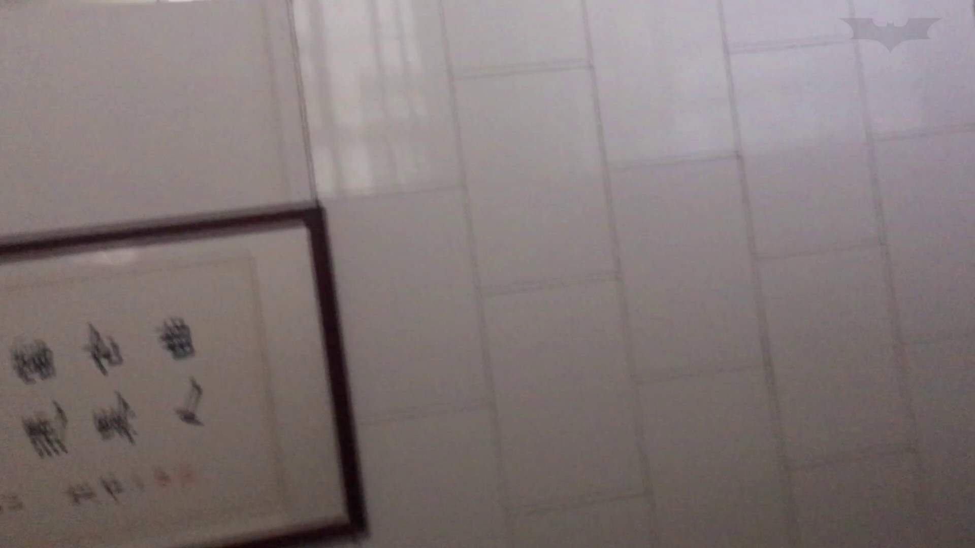 芸術大学ガチ潜入盗撮 JD盗撮 美女の洗面所の秘密 Vol.80 洗面所シーン  53画像 48