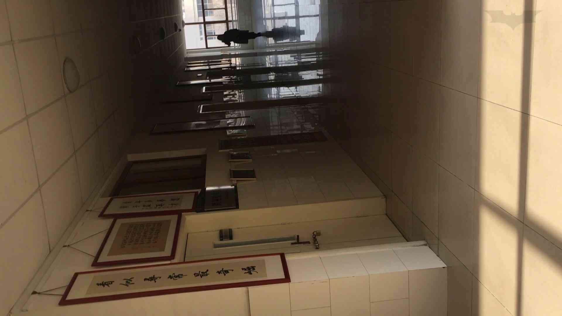 芸術大学ガチ潜入盗撮 JD盗撮 美女の洗面所の秘密 Vol.88 トイレで・・・ セックス画像 16画像 10