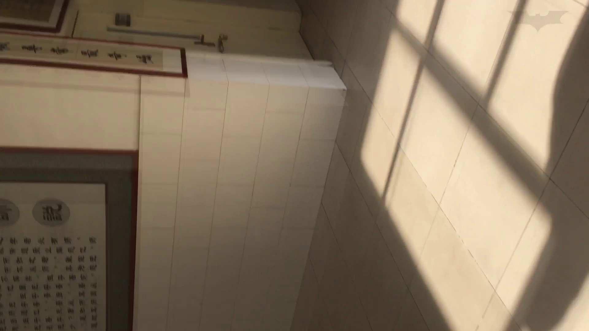 芸術大学ガチ潜入盗撮 JD盗撮 美女の洗面所の秘密 Vol.88 丸見え   潜入  16画像 12