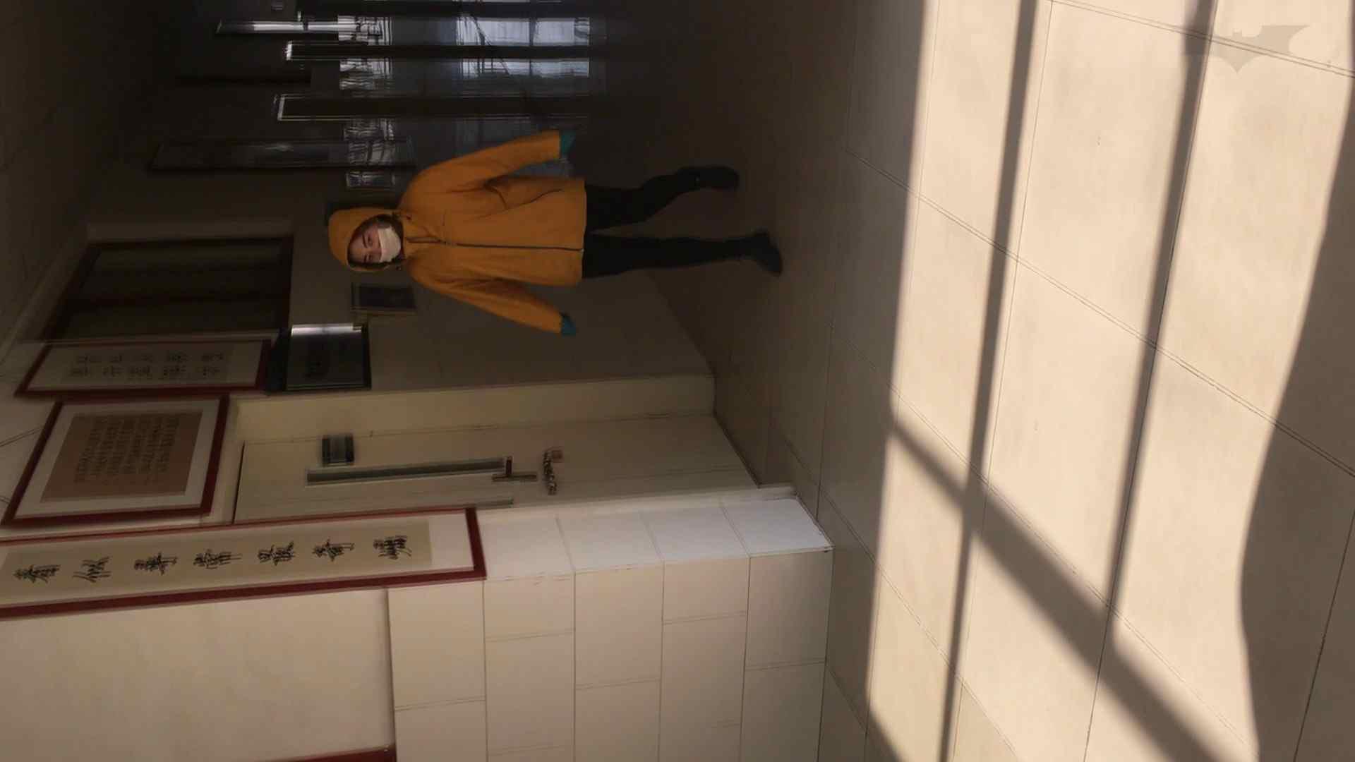芸術大学ガチ潜入盗撮 JD盗撮 美女の洗面所の秘密 Vol.91 盛合せ AV無料動画キャプチャ 66画像 14