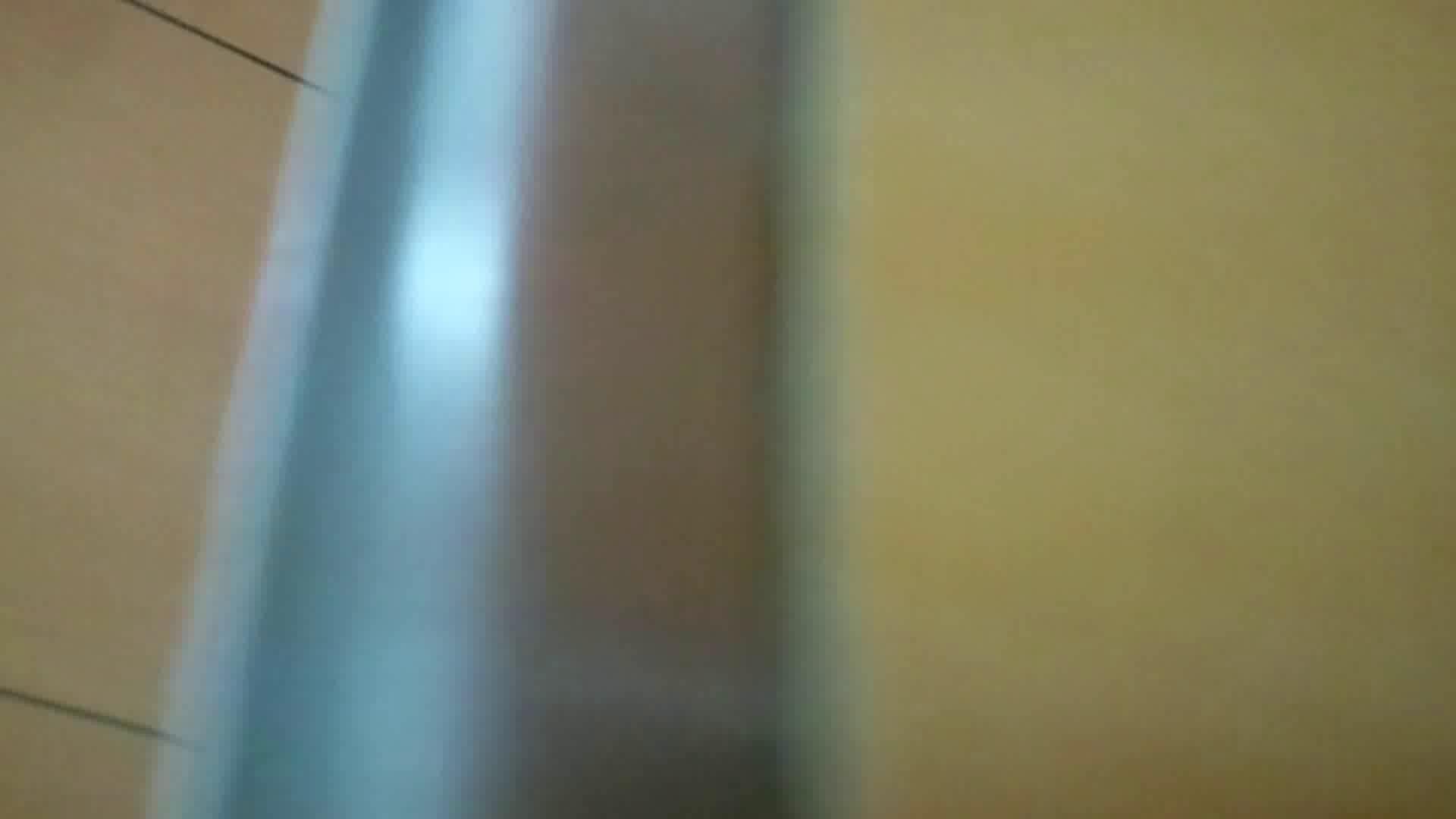 化粧室絵巻 商い場編 VOL.14 エッチなお姉さん すけべAV動画紹介 50画像 43