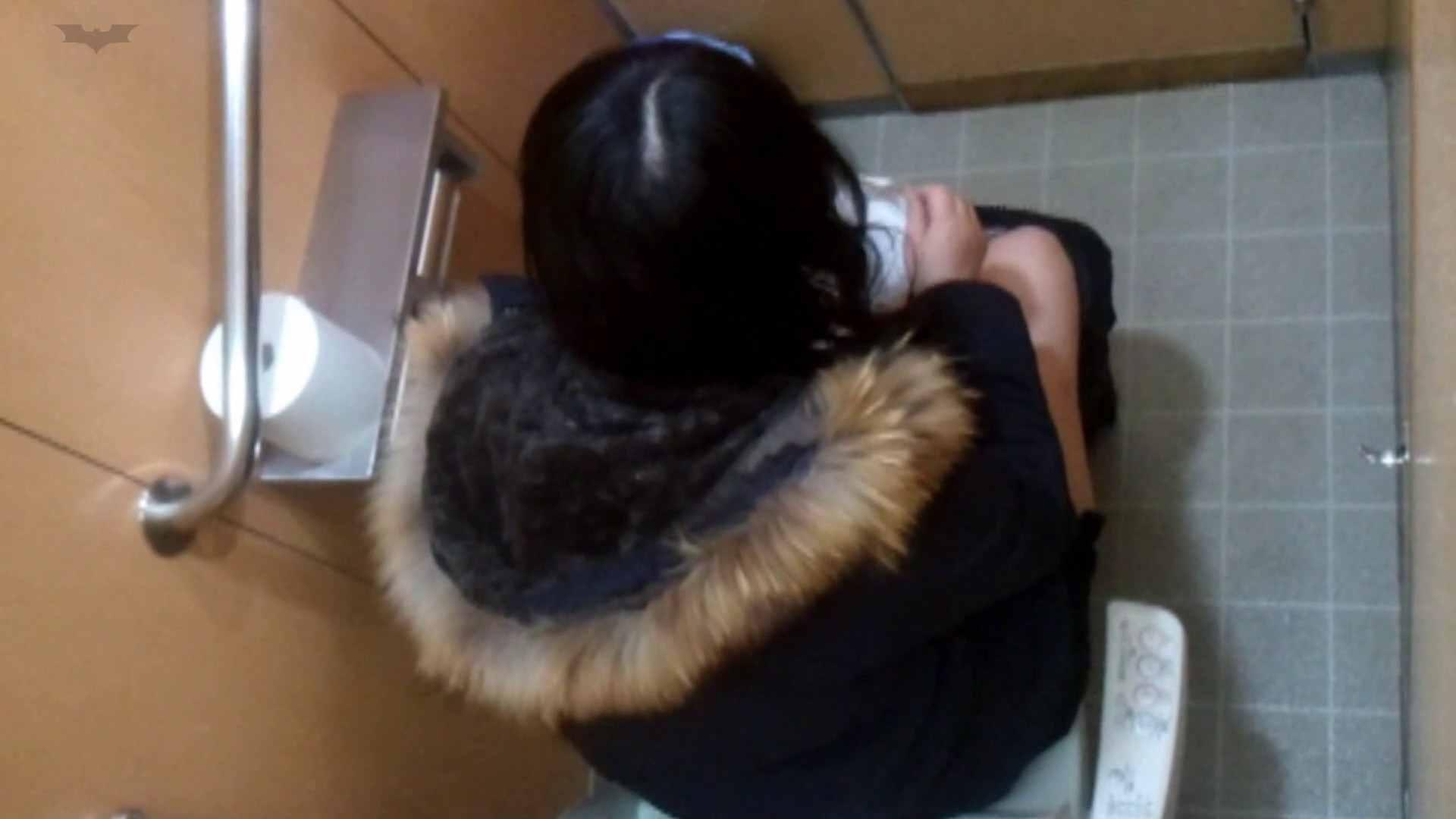 化粧室絵巻 商い場編 VOL.27 エッチなお姉さん オメコ動画キャプチャ 93画像 53
