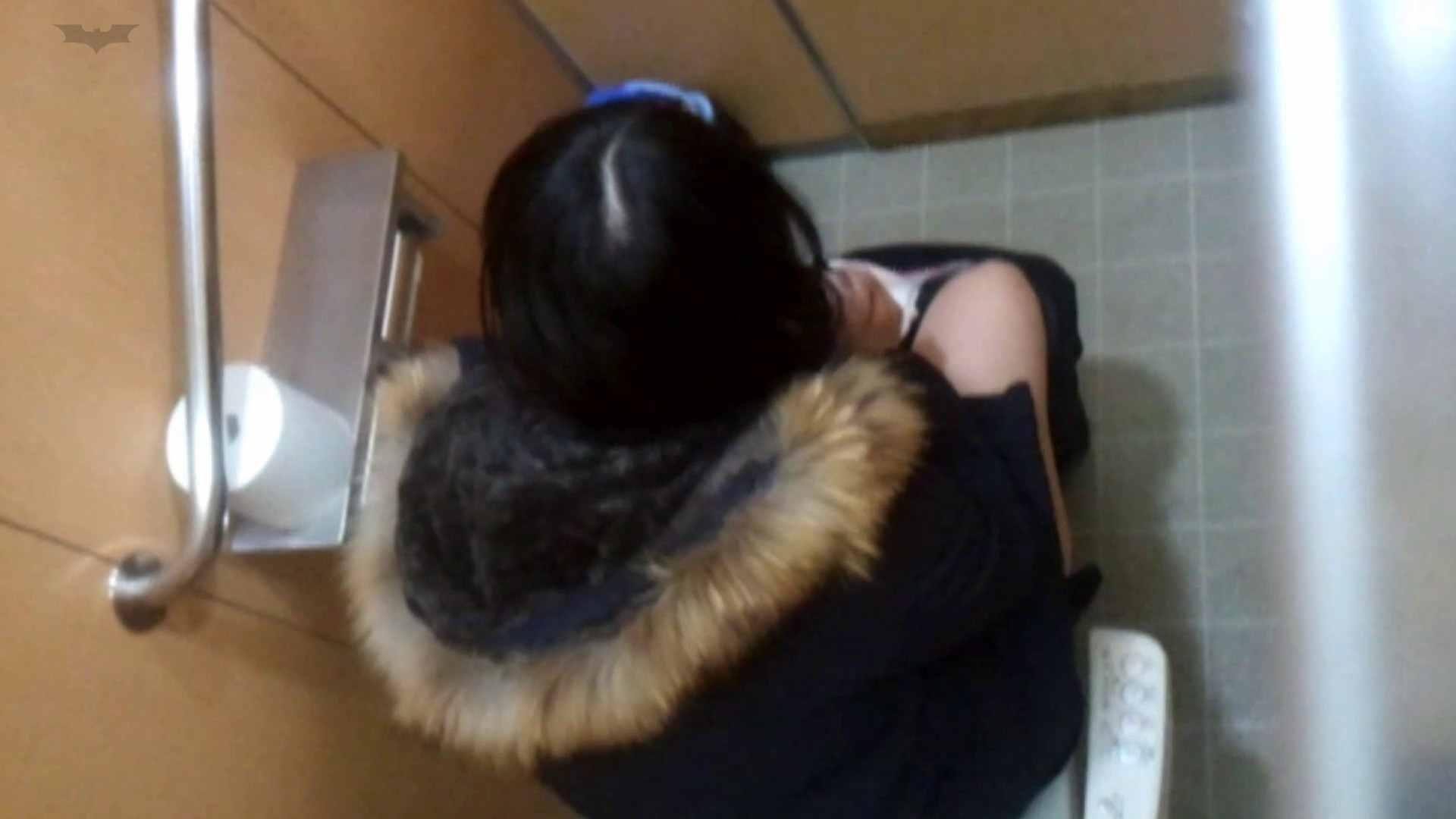 化粧室絵巻 商い場編 VOL.27 高画質動画 SEX無修正画像 93画像 59