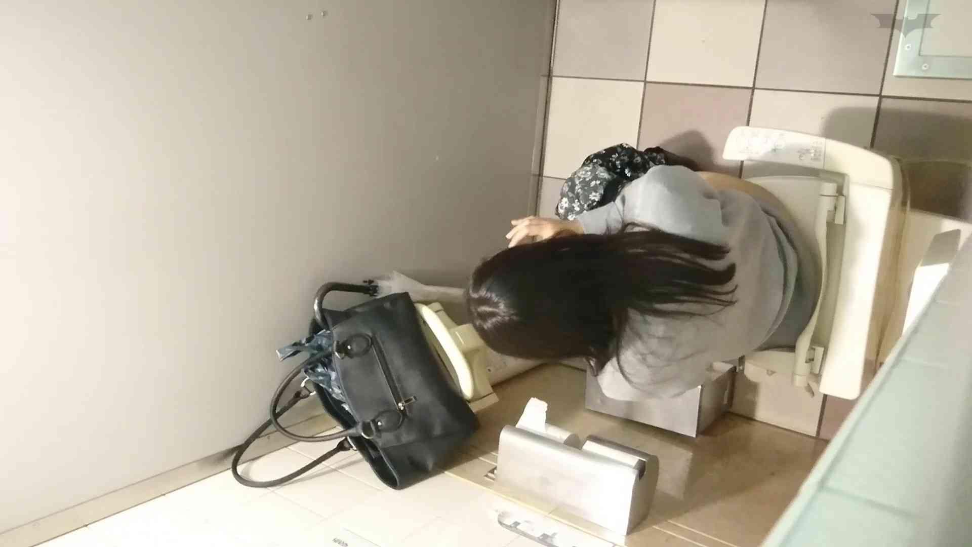 化粧室絵巻 ショッピングモール編 VOL.21 美肌 ぱこり動画紹介 65画像 3
