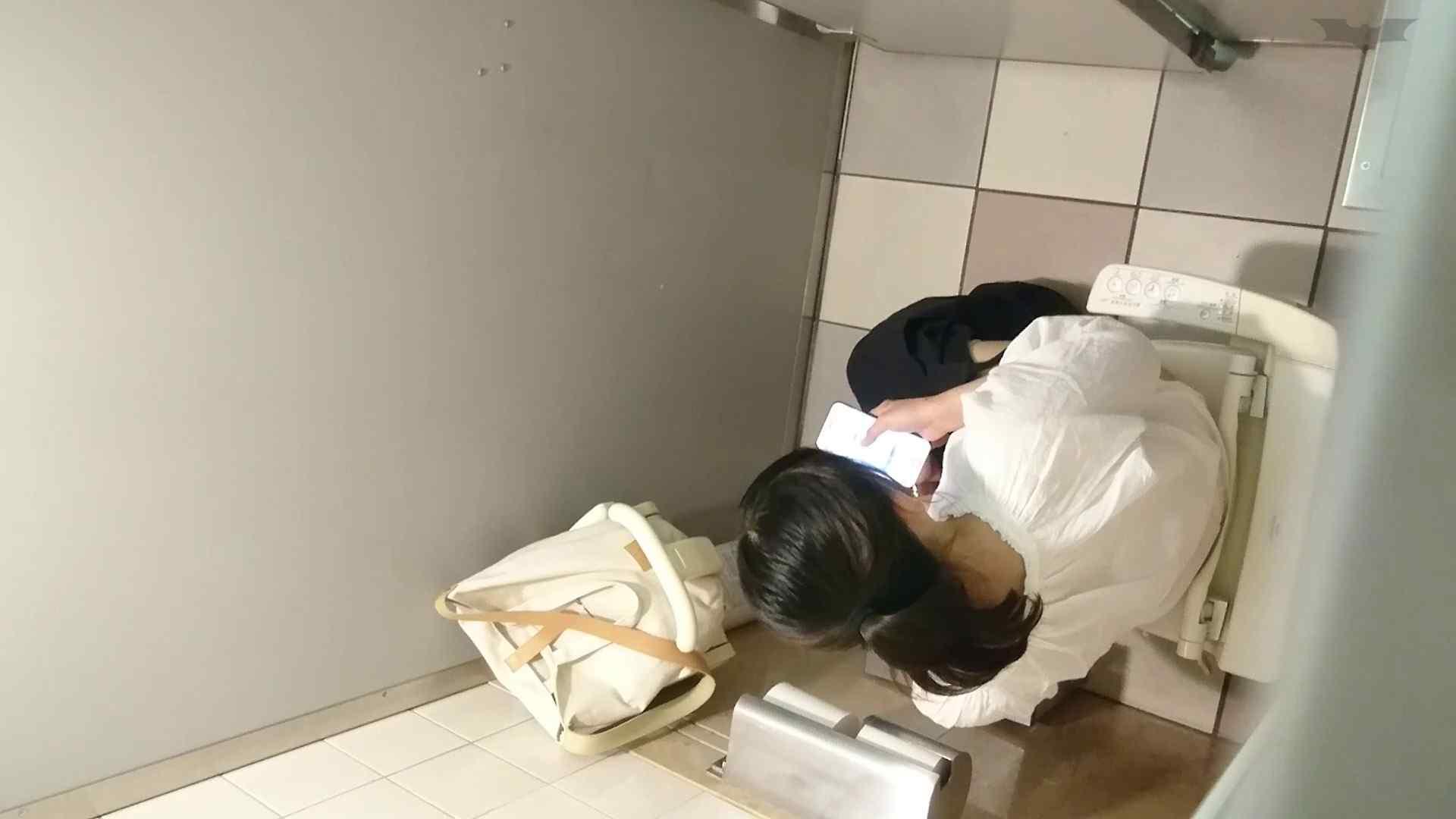 化粧室絵巻 ショッピングモール編 VOL.22 洗面所シーン 性交動画流出 24画像 5