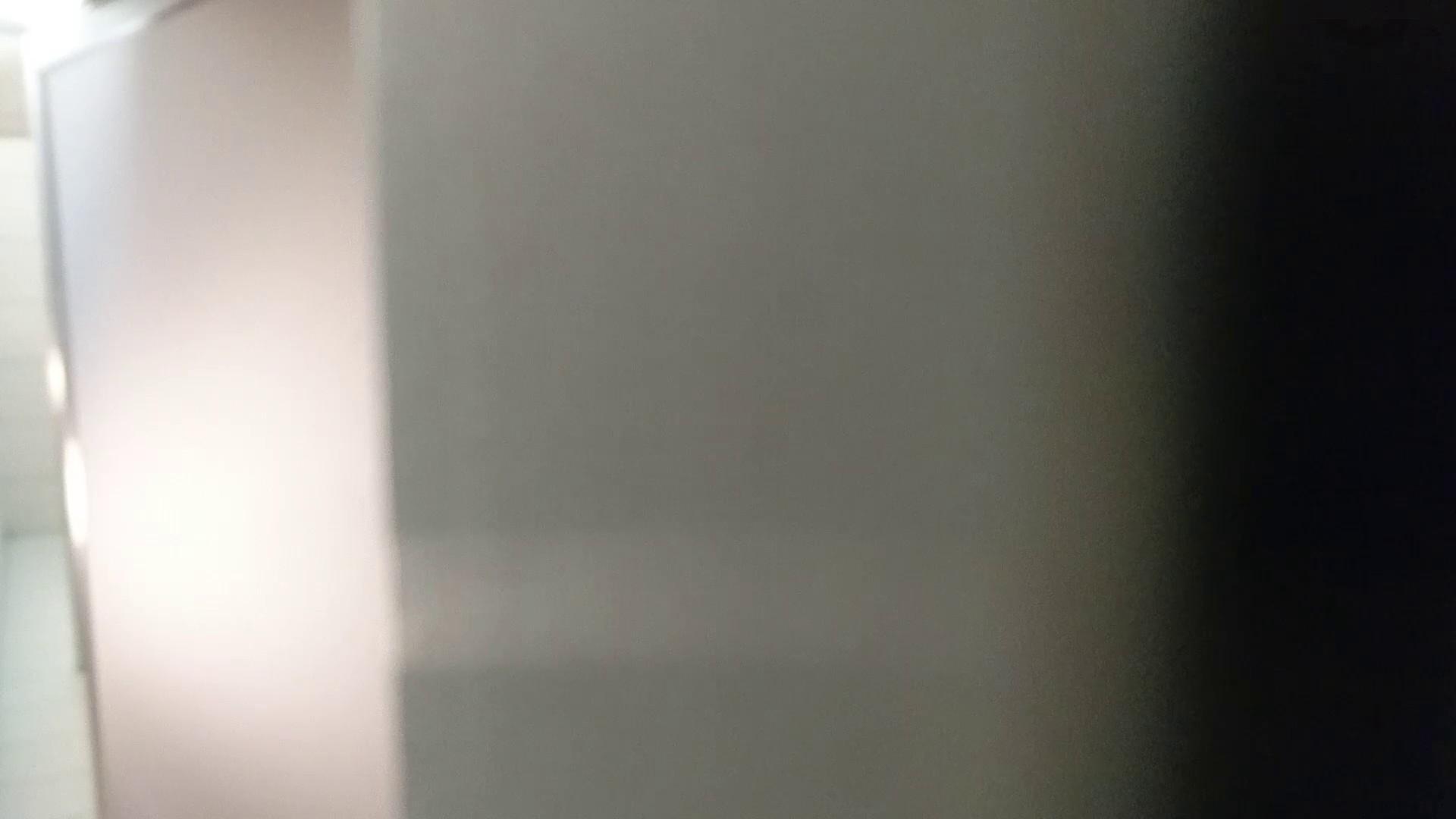 化粧室絵巻 ショッピングモール編 VOL.22 ギャルズ   丸見え  24画像 9