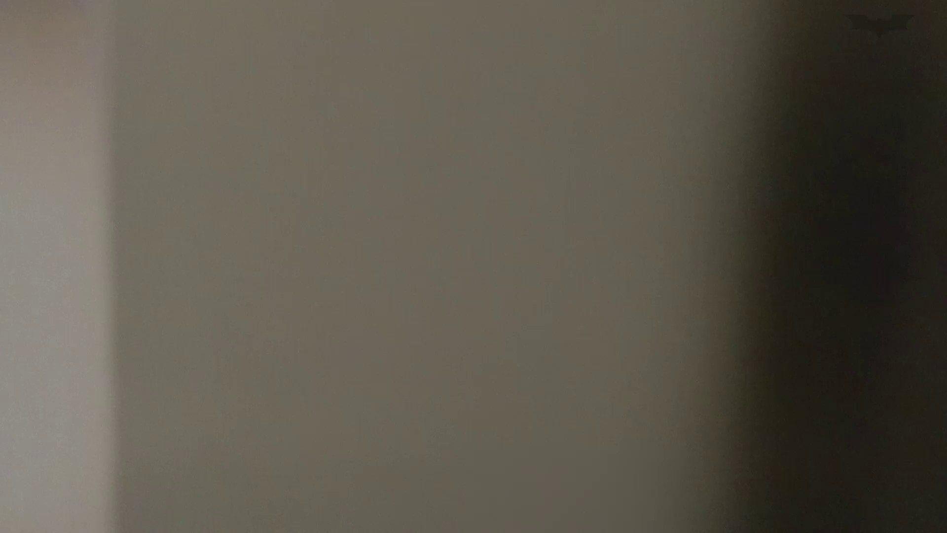 化粧室絵巻 ショッピングモール編 VOL.24 丸見え  90画像 9