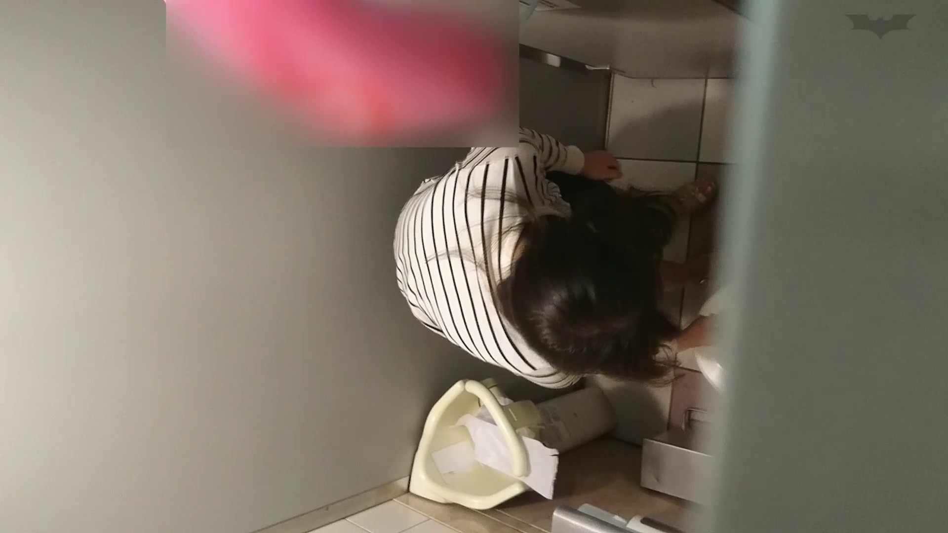 化粧室絵巻 ショッピングモール編 VOL.24 高評価 ぱこり動画紹介 90画像 43