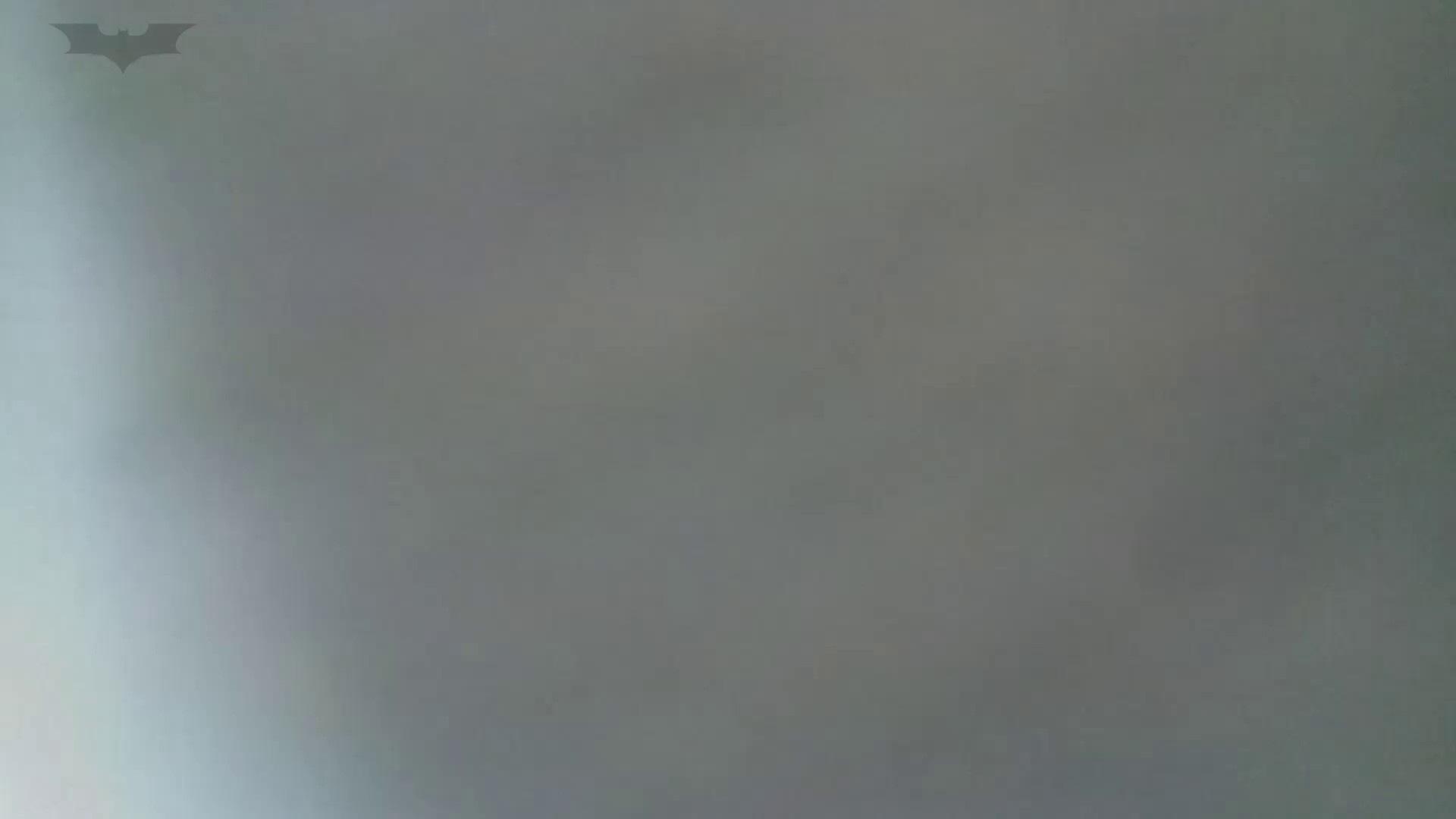 化粧室絵巻 番外編 VOL.14 細身・スレンダー ぱこり動画紹介 75画像 44