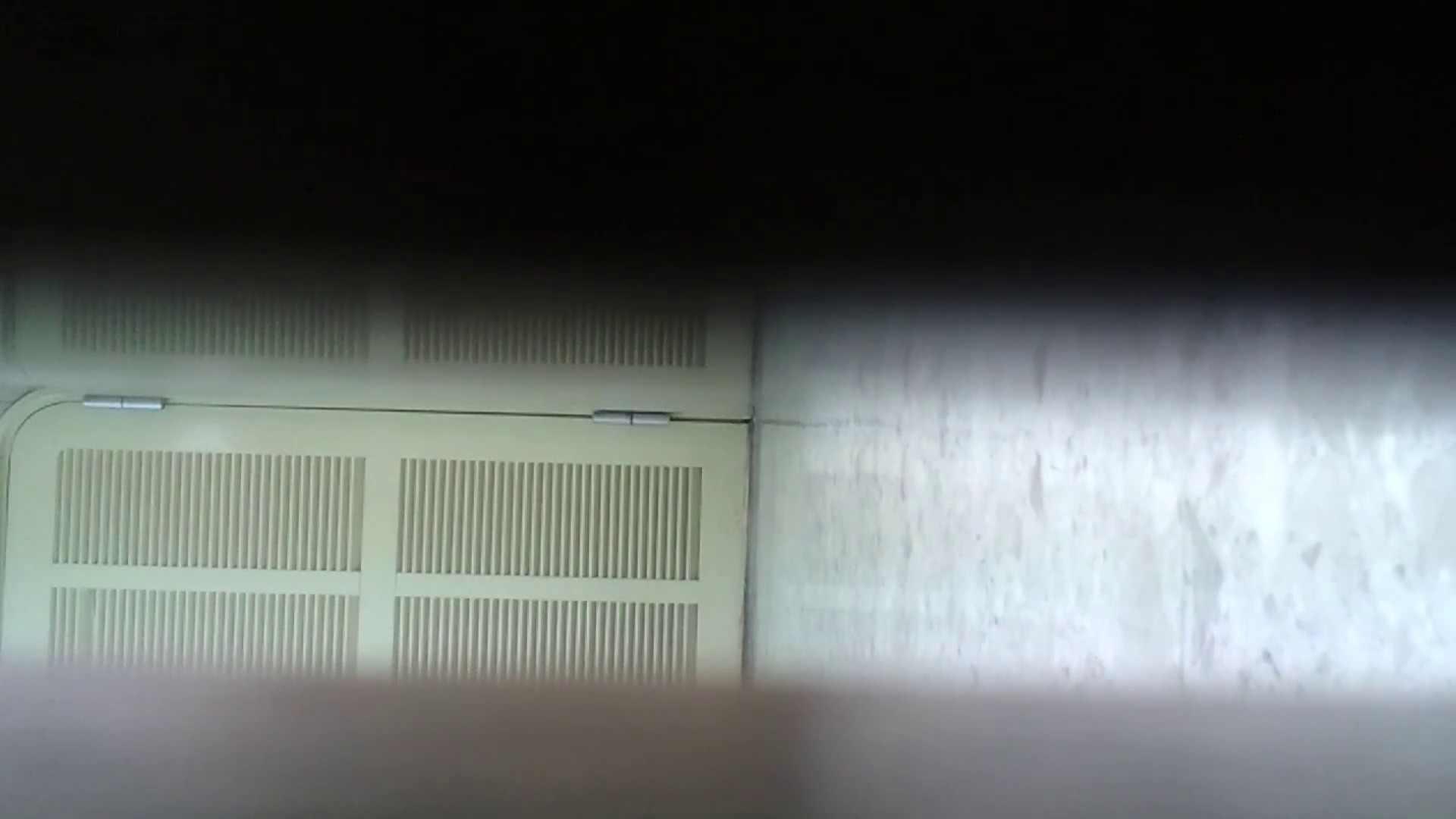化粧室絵巻 番外編 VOL.15 ギャルズ 性交動画流出 96画像 92
