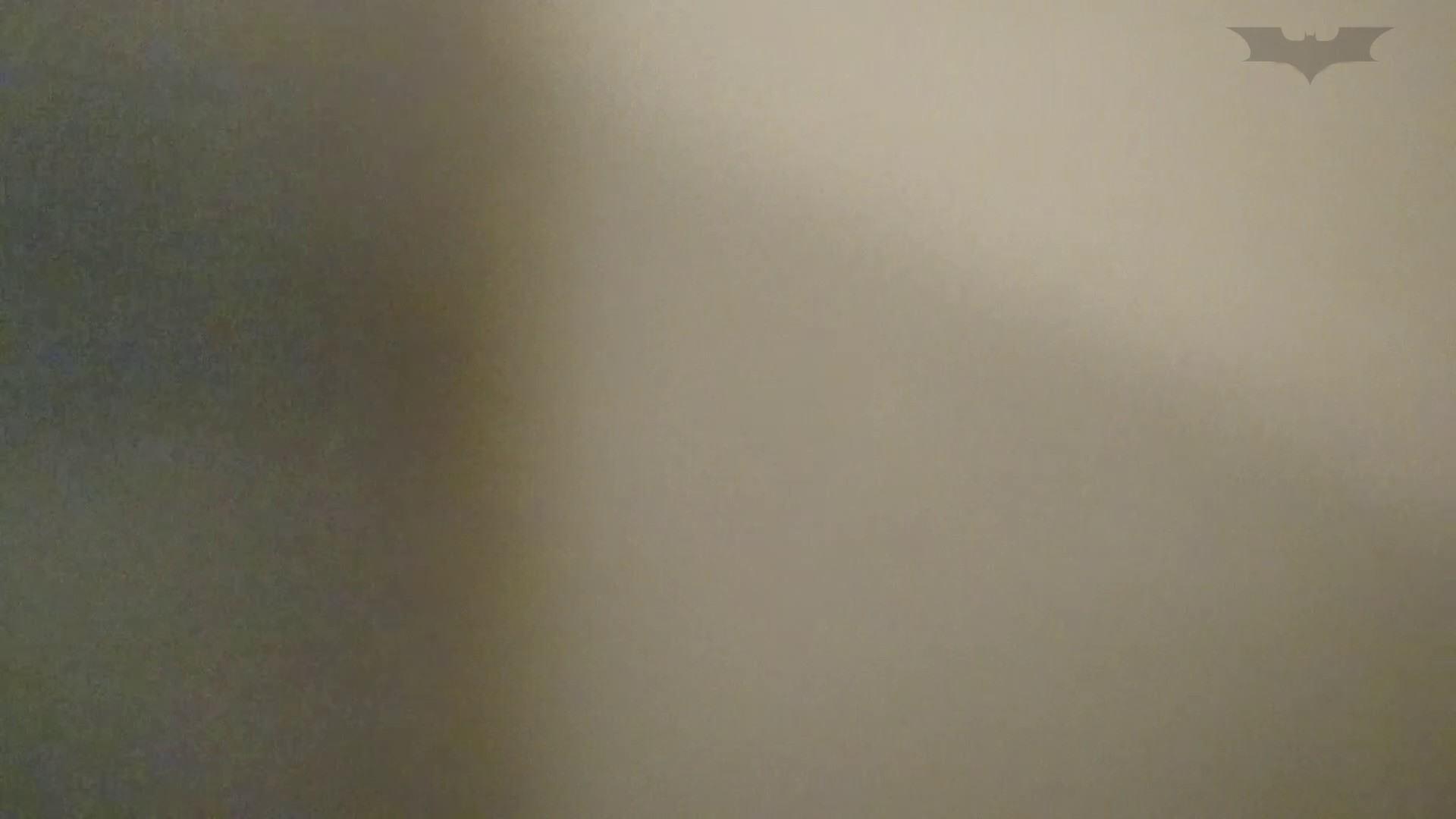 化粧室絵巻 ショッピングモール編 VOL.08 細身・スレンダー  97画像 16