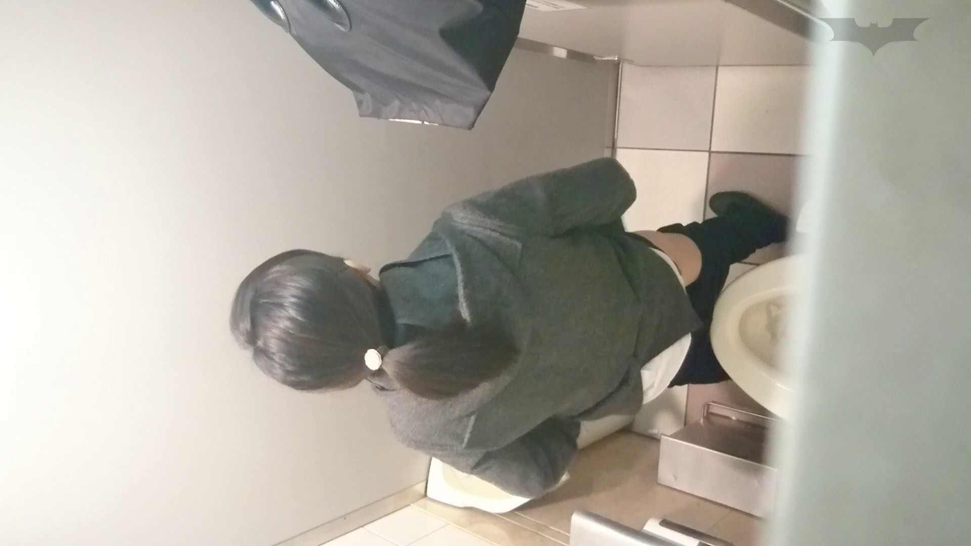 化粧室絵巻 ショッピングモール編 VOL.08 丸見え ぱこり動画紹介 97画像 91