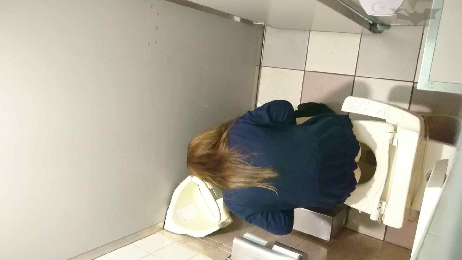 化粧室絵巻 ショッピングモール編 VOL.12 丸見え ワレメ動画紹介 78画像 35