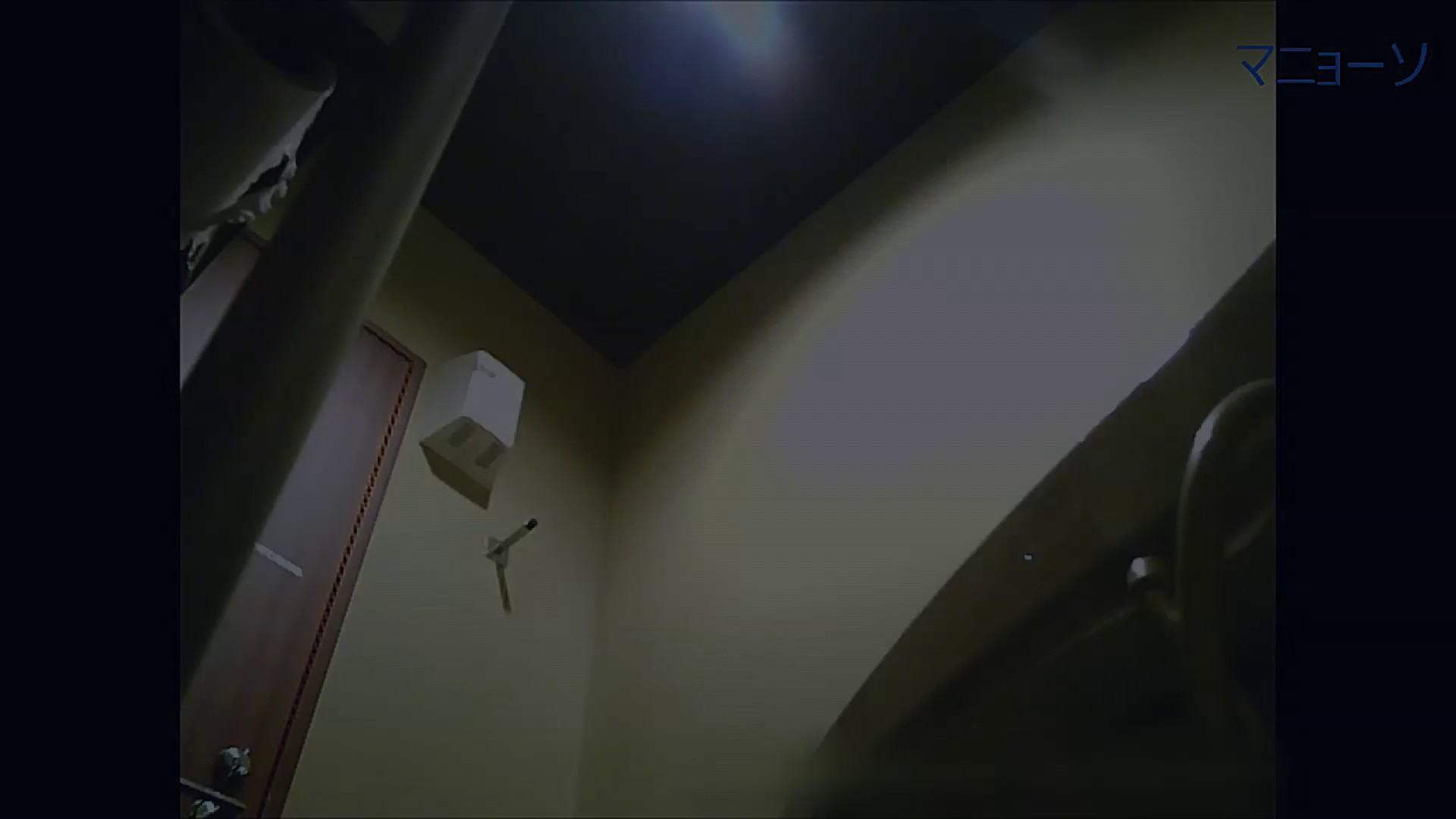 トイレでひと肌脱いでもらいました (JD編)Vol.07 エッチなお姉さん ぱこり動画紹介 54画像 40