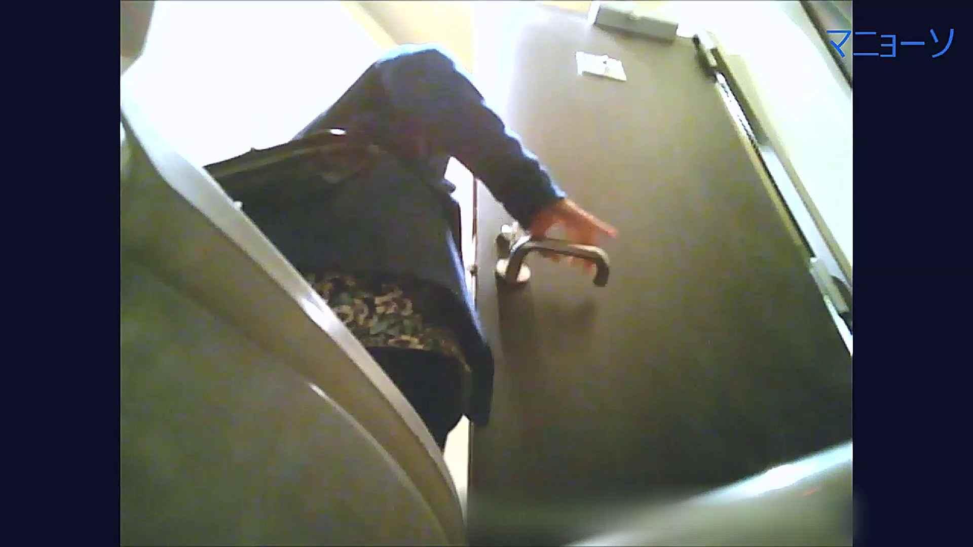 トイレでひと肌脱いでもらいました (OL編)Vol.07 高画質動画  100画像 54