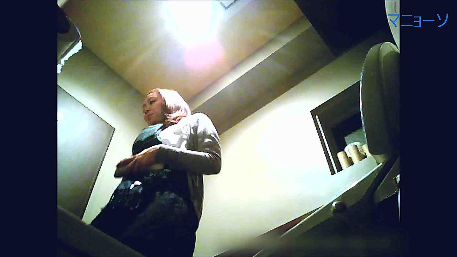 トイレでひと肌脱いでもらいました (OL編)Vol.12 丸見え AV無料 85画像 21