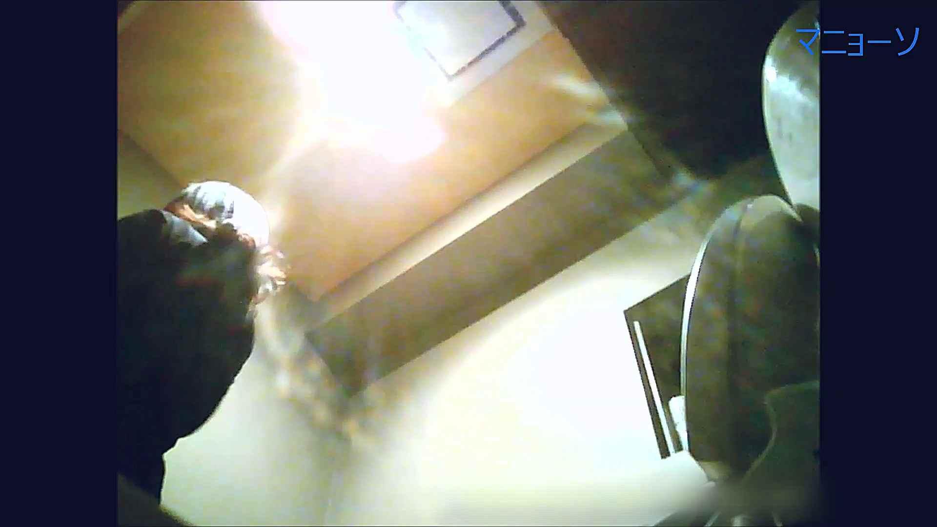 トイレでひと肌脱いでもらいました (OL編)Vol.12 盛合せ AV無料動画キャプチャ 85画像 46