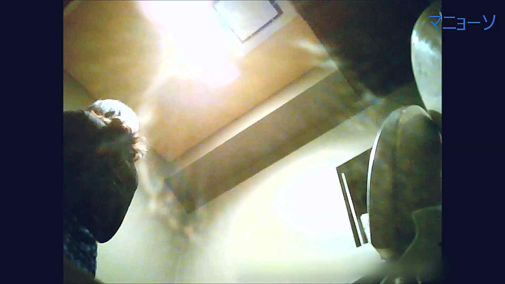 トイレでひと肌脱いでもらいました (OL編)Vol.12 エッチなお姉さん  85画像 48